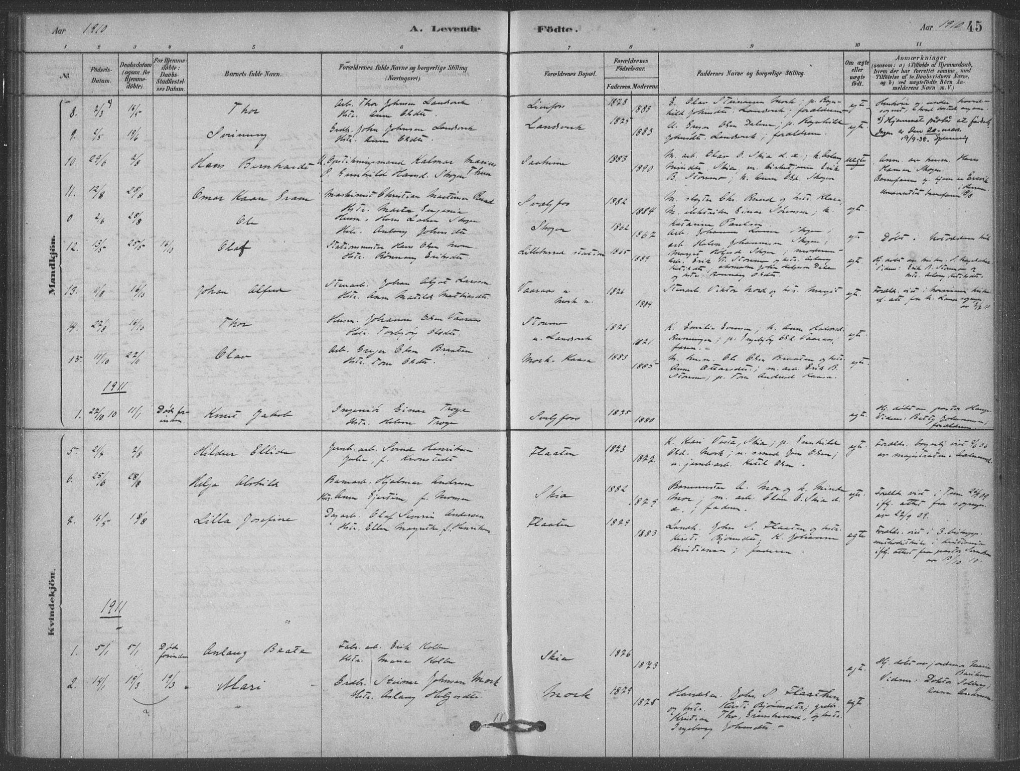 SAKO, Heddal kirkebøker, F/Fb/L0002: Ministerialbok nr. II 2, 1878-1913, s. 45