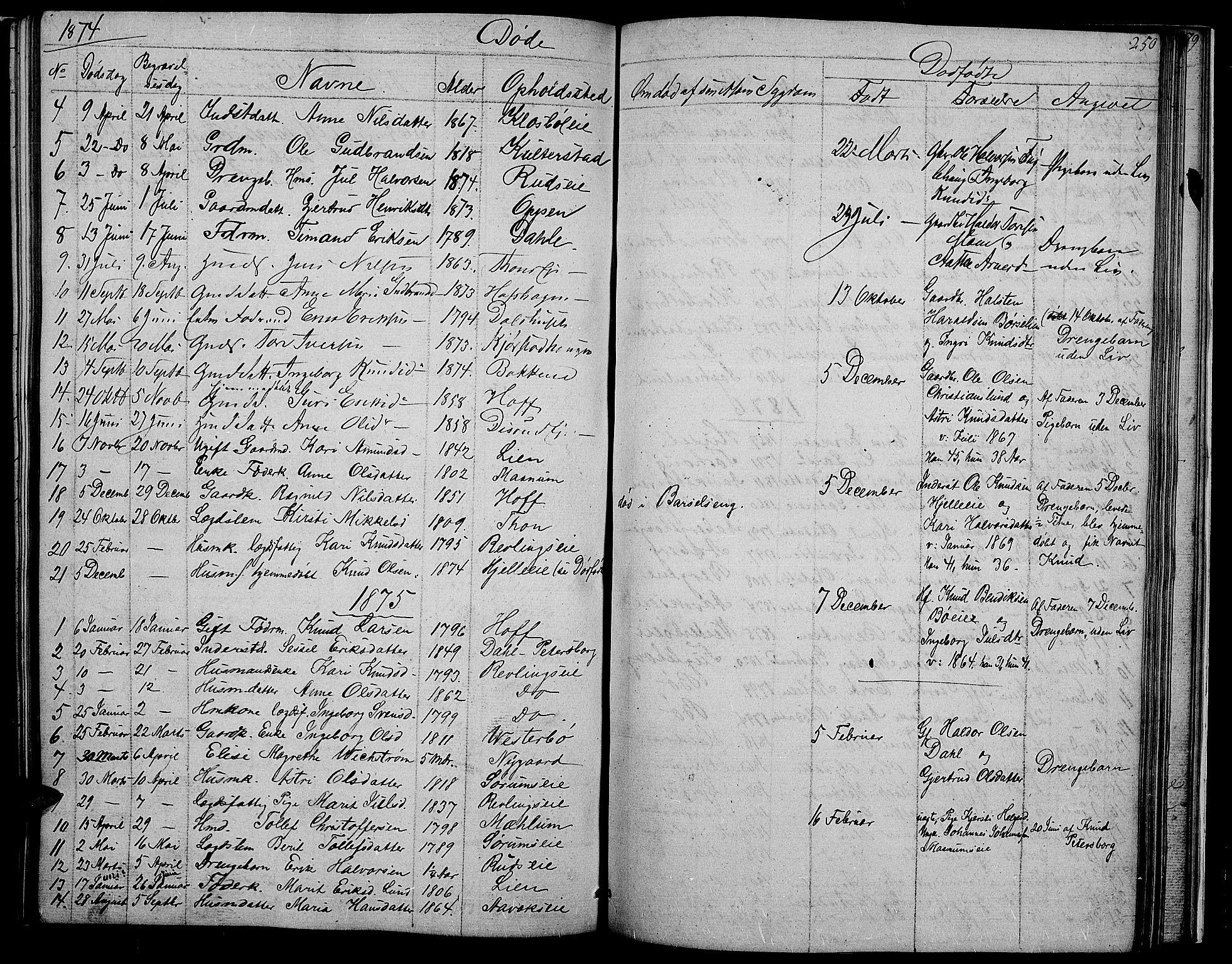 SAH, Nord-Aurdal prestekontor, Klokkerbok nr. 2, 1842-1877, s. 250