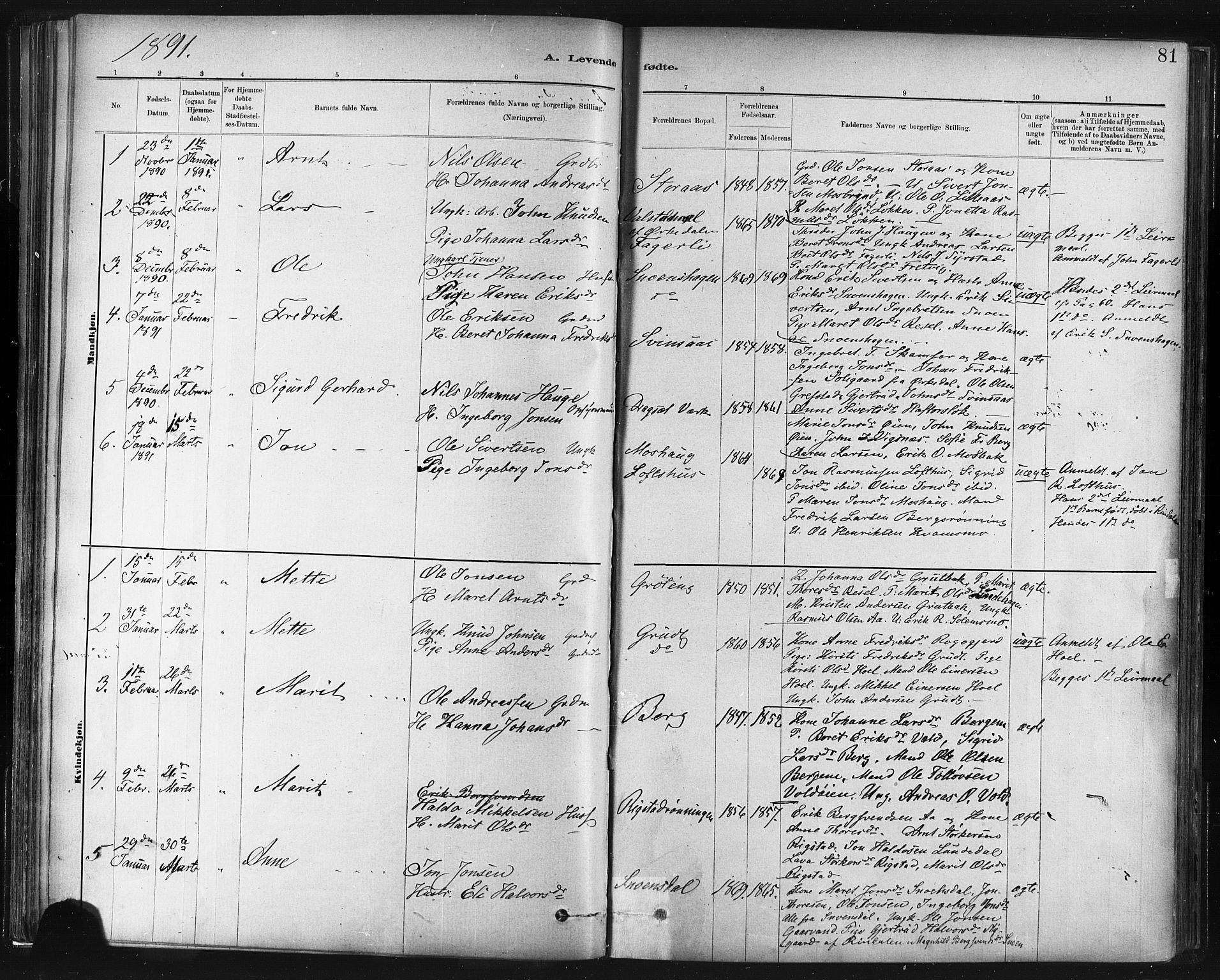 SAT, Ministerialprotokoller, klokkerbøker og fødselsregistre - Sør-Trøndelag, 672/L0857: Ministerialbok nr. 672A09, 1882-1893, s. 81