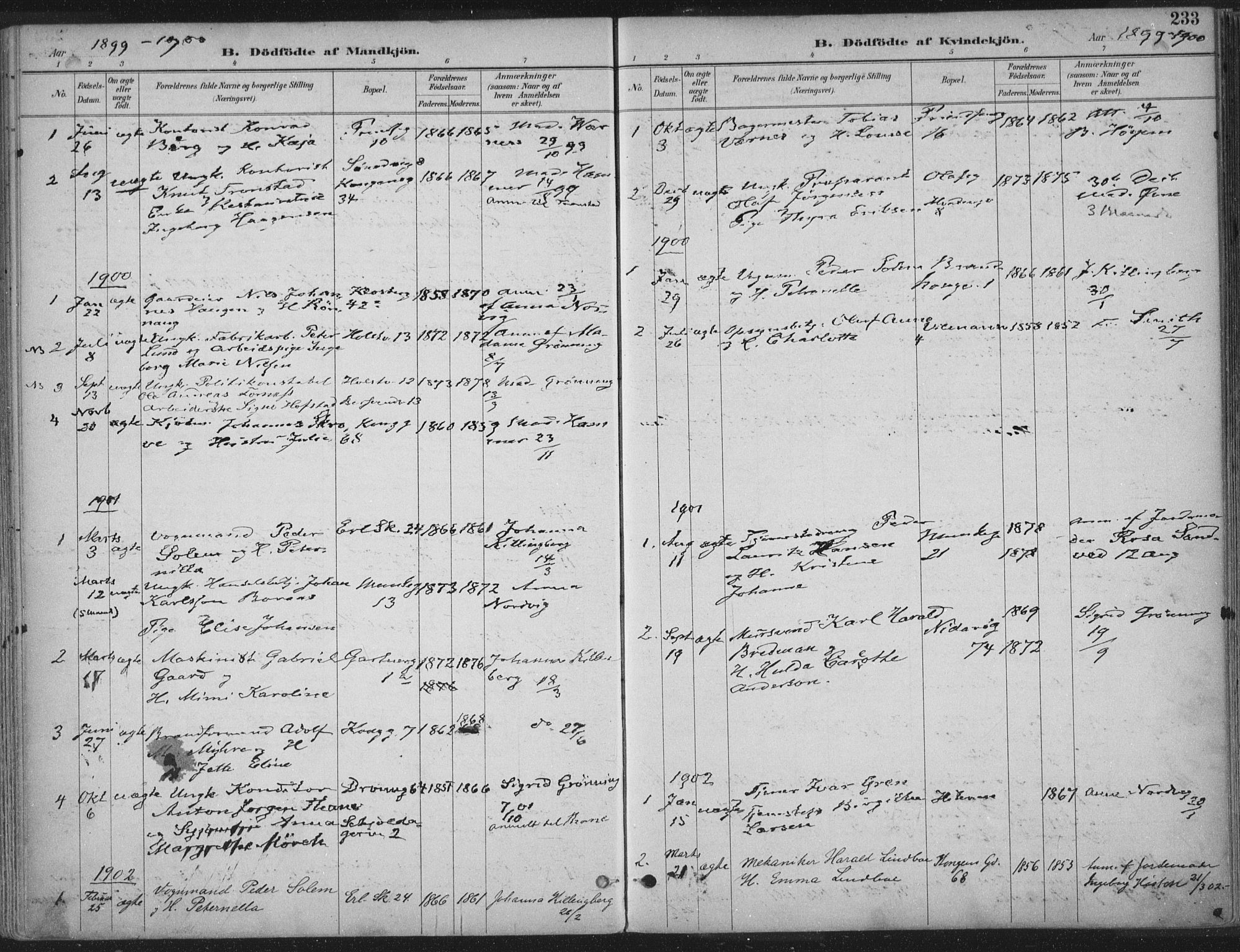 SAT, Ministerialprotokoller, klokkerbøker og fødselsregistre - Sør-Trøndelag, 601/L0062: Ministerialbok nr. 601A30, 1891-1911, s. 233