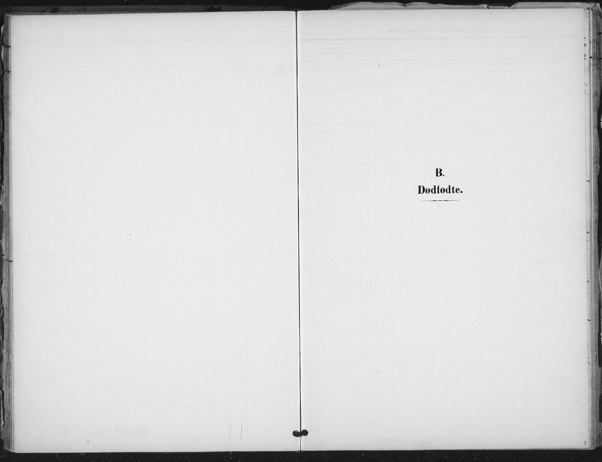 SAT, Ministerialprotokoller, klokkerbøker og fødselsregistre - Nord-Trøndelag, 712/L0101: Ministerialbok nr. 712A02, 1901-1916
