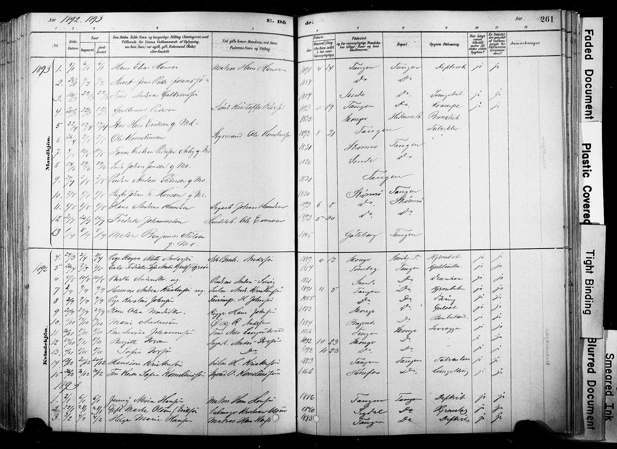 SAKO, Strømsø kirkebøker, F/Fb/L0006: Ministerialbok nr. II 6, 1879-1910, s. 261