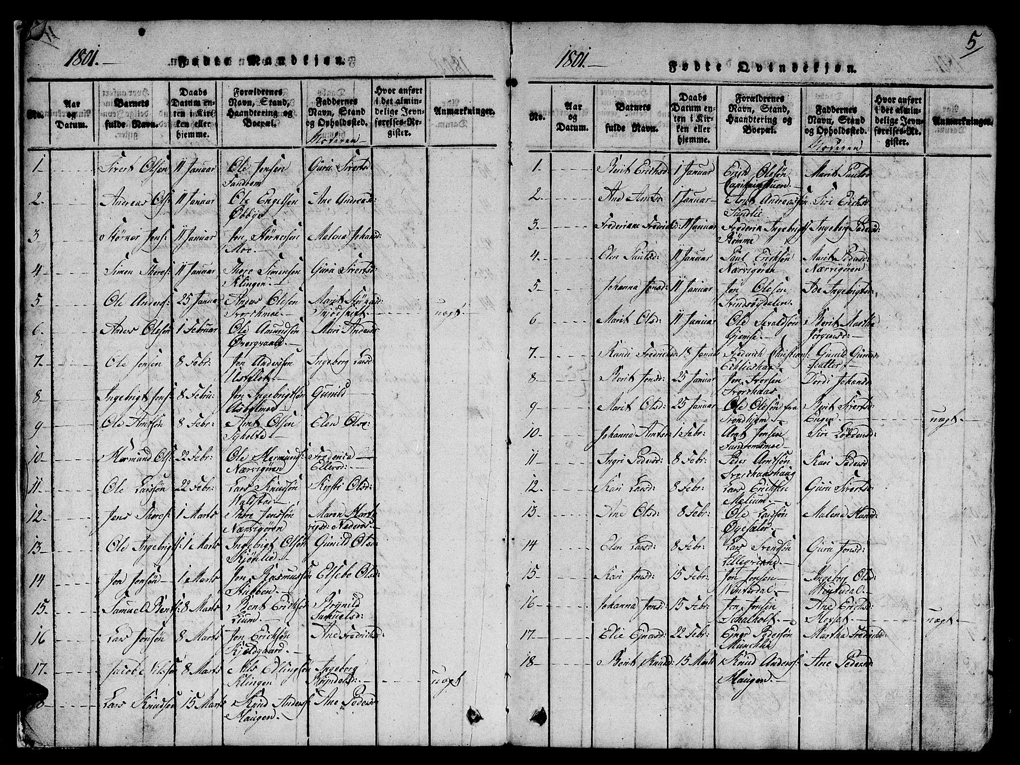 SAT, Ministerialprotokoller, klokkerbøker og fødselsregistre - Sør-Trøndelag, 668/L0803: Ministerialbok nr. 668A03, 1800-1826, s. 5