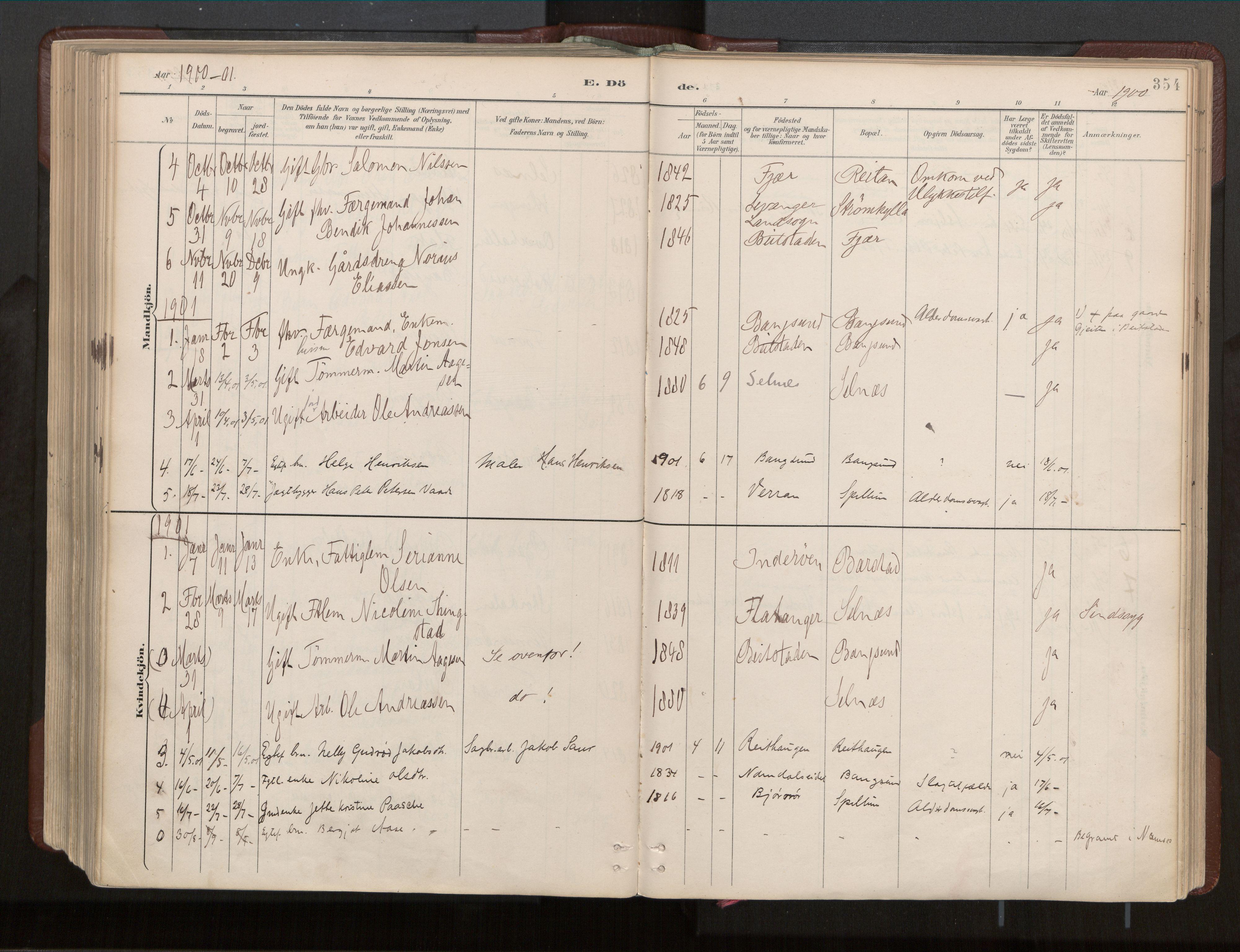 SAT, Ministerialprotokoller, klokkerbøker og fødselsregistre - Nord-Trøndelag, 770/L0589: Ministerialbok nr. 770A03, 1887-1929, s. 354
