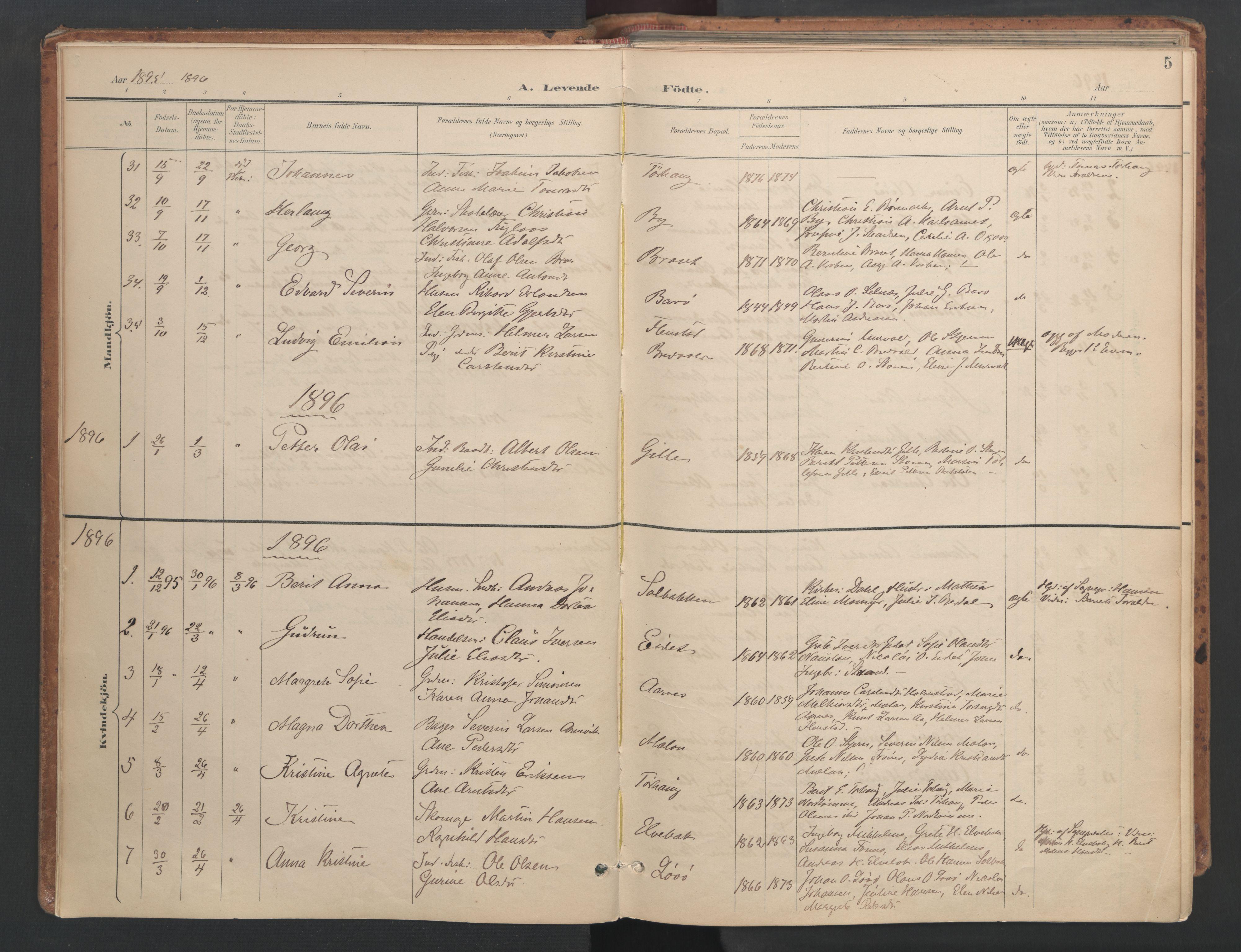 SAT, Ministerialprotokoller, klokkerbøker og fødselsregistre - Sør-Trøndelag, 655/L0681: Ministerialbok nr. 655A10, 1895-1907, s. 5