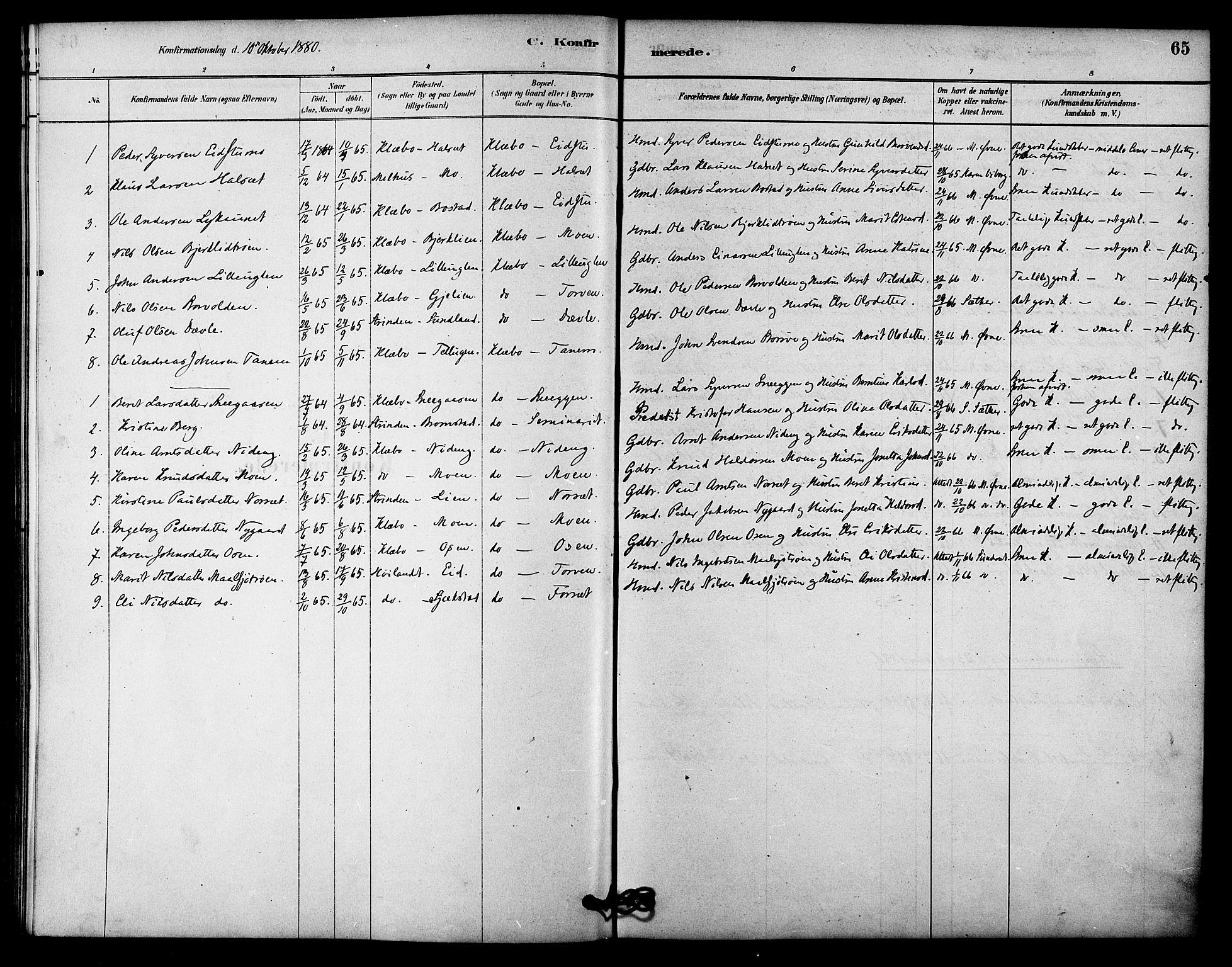 SAT, Ministerialprotokoller, klokkerbøker og fødselsregistre - Sør-Trøndelag, 618/L0444: Ministerialbok nr. 618A07, 1880-1898, s. 65