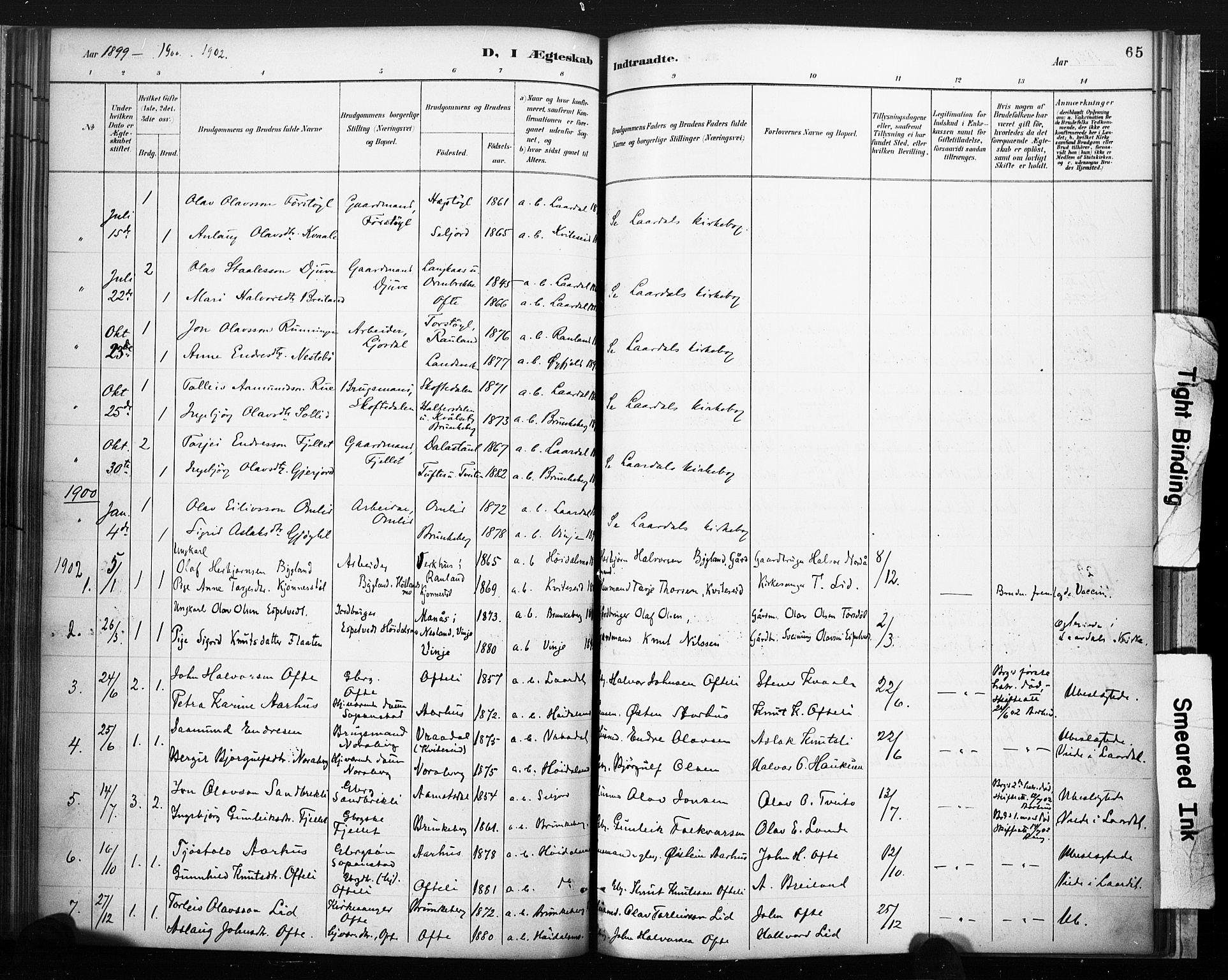 SAKO, Lårdal kirkebøker, F/Fc/L0002: Ministerialbok nr. III 2, 1887-1906, s. 65