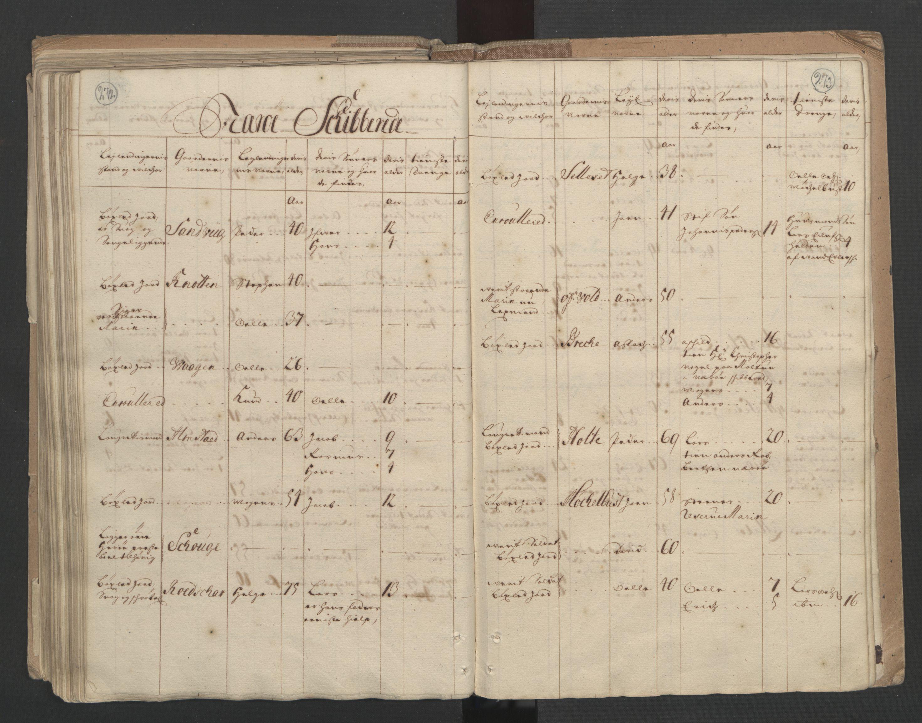 RA, Manntallet 1701, nr. 10: Sunnmøre fogderi, 1701, s. 272-273