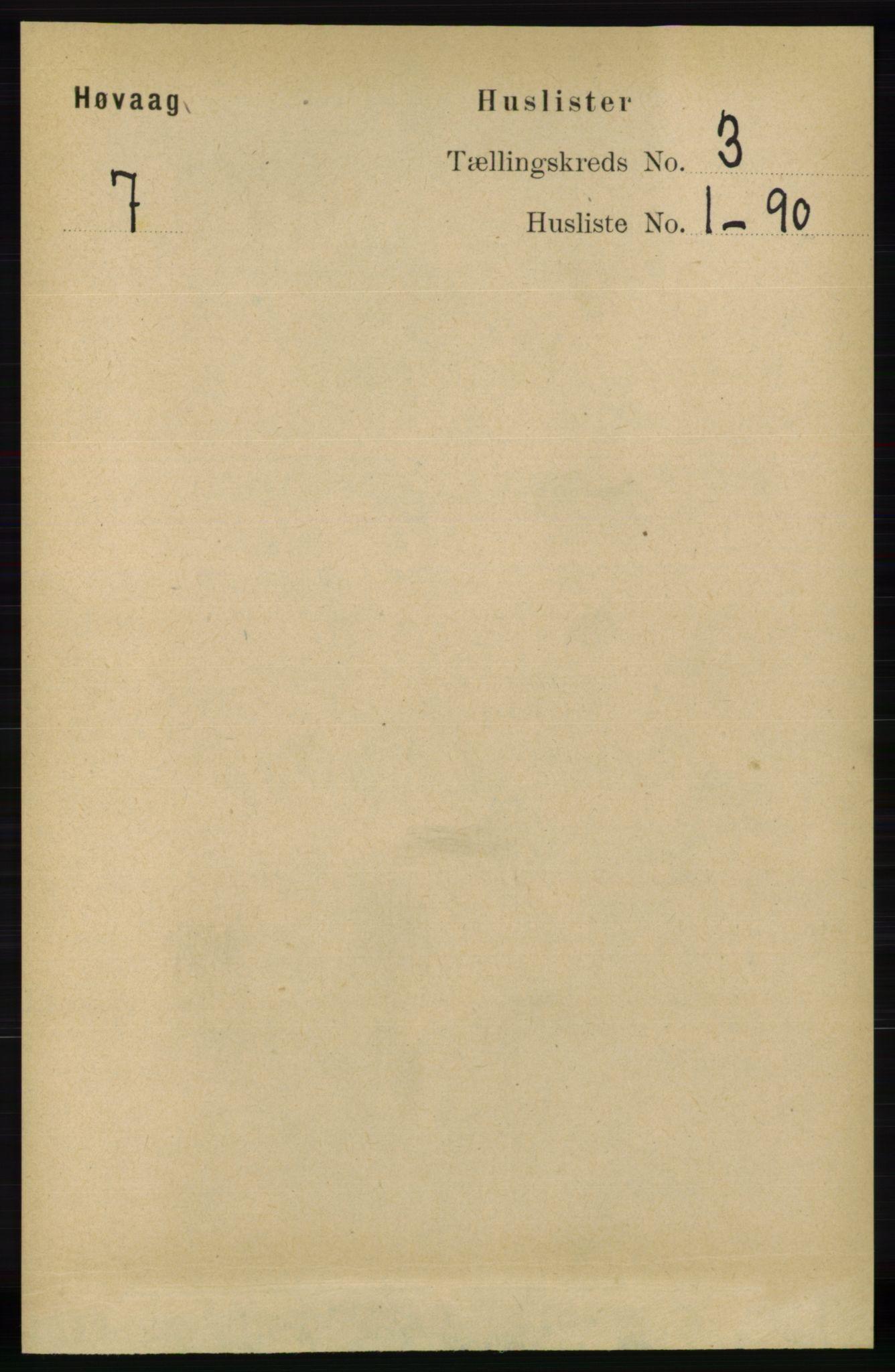 RA, Folketelling 1891 for 0927 Høvåg herred, 1891, s. 918