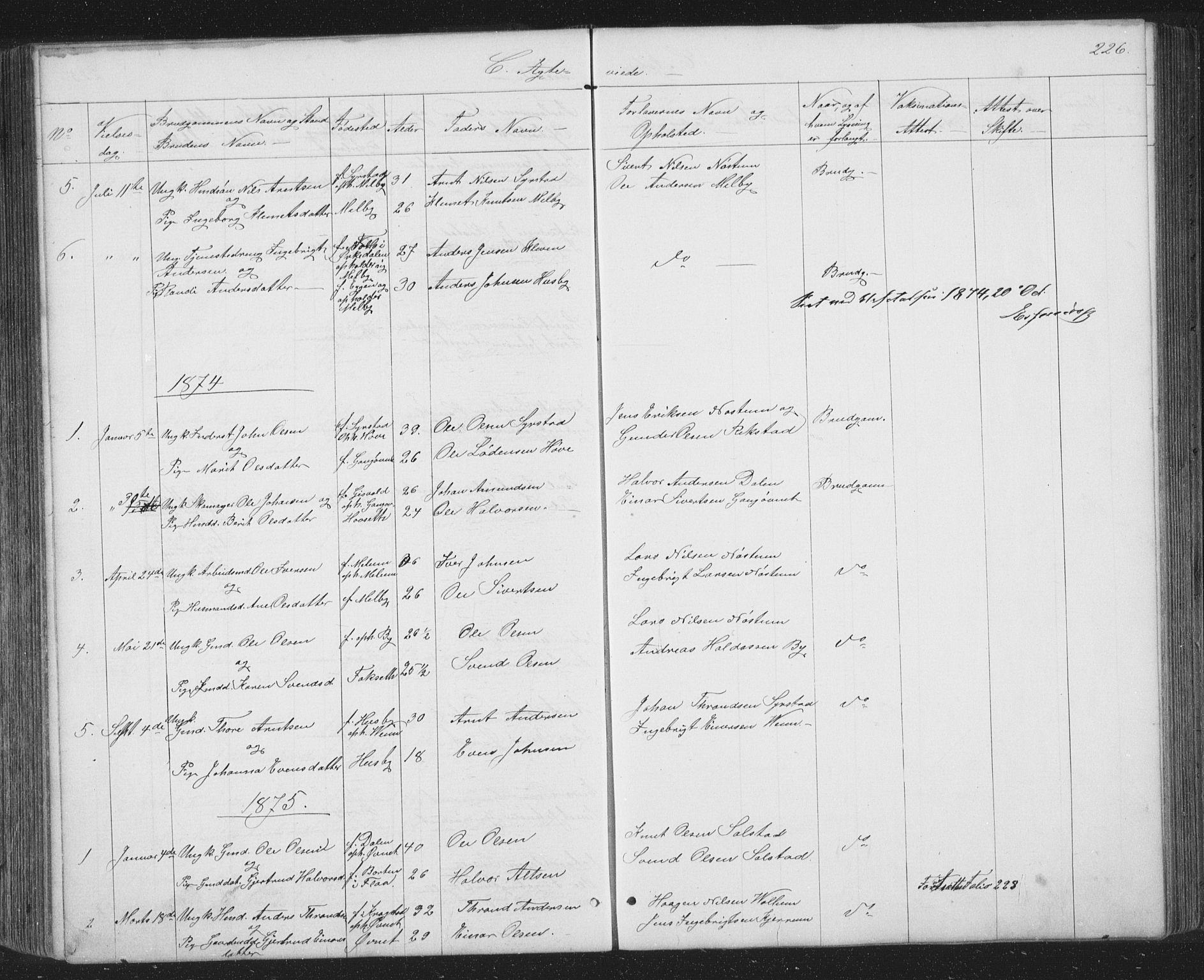 SAT, Ministerialprotokoller, klokkerbøker og fødselsregistre - Sør-Trøndelag, 667/L0798: Klokkerbok nr. 667C03, 1867-1929, s. 226