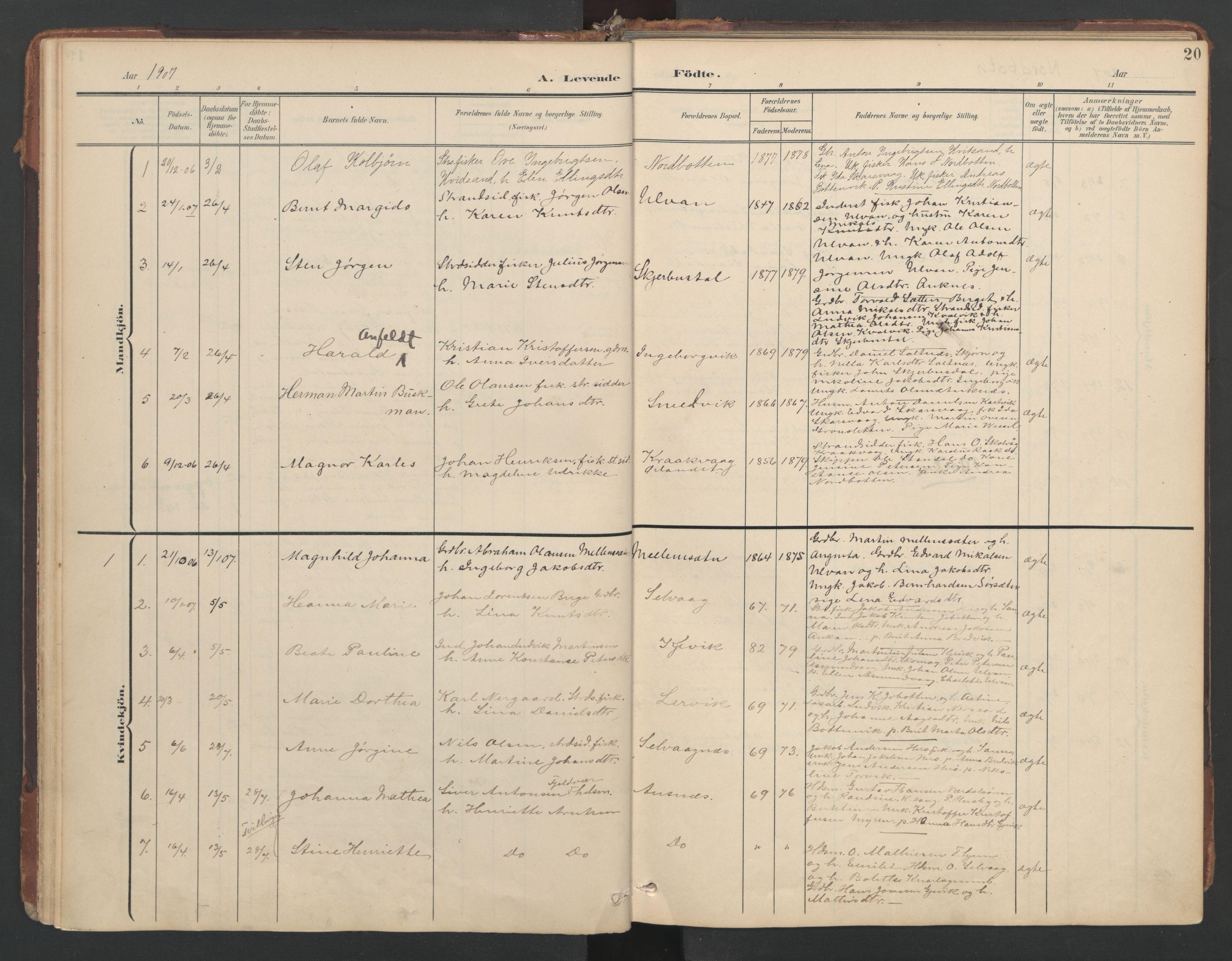 SAT, Ministerialprotokoller, klokkerbøker og fødselsregistre - Sør-Trøndelag, 638/L0568: Ministerialbok nr. 638A01, 1901-1916, s. 20