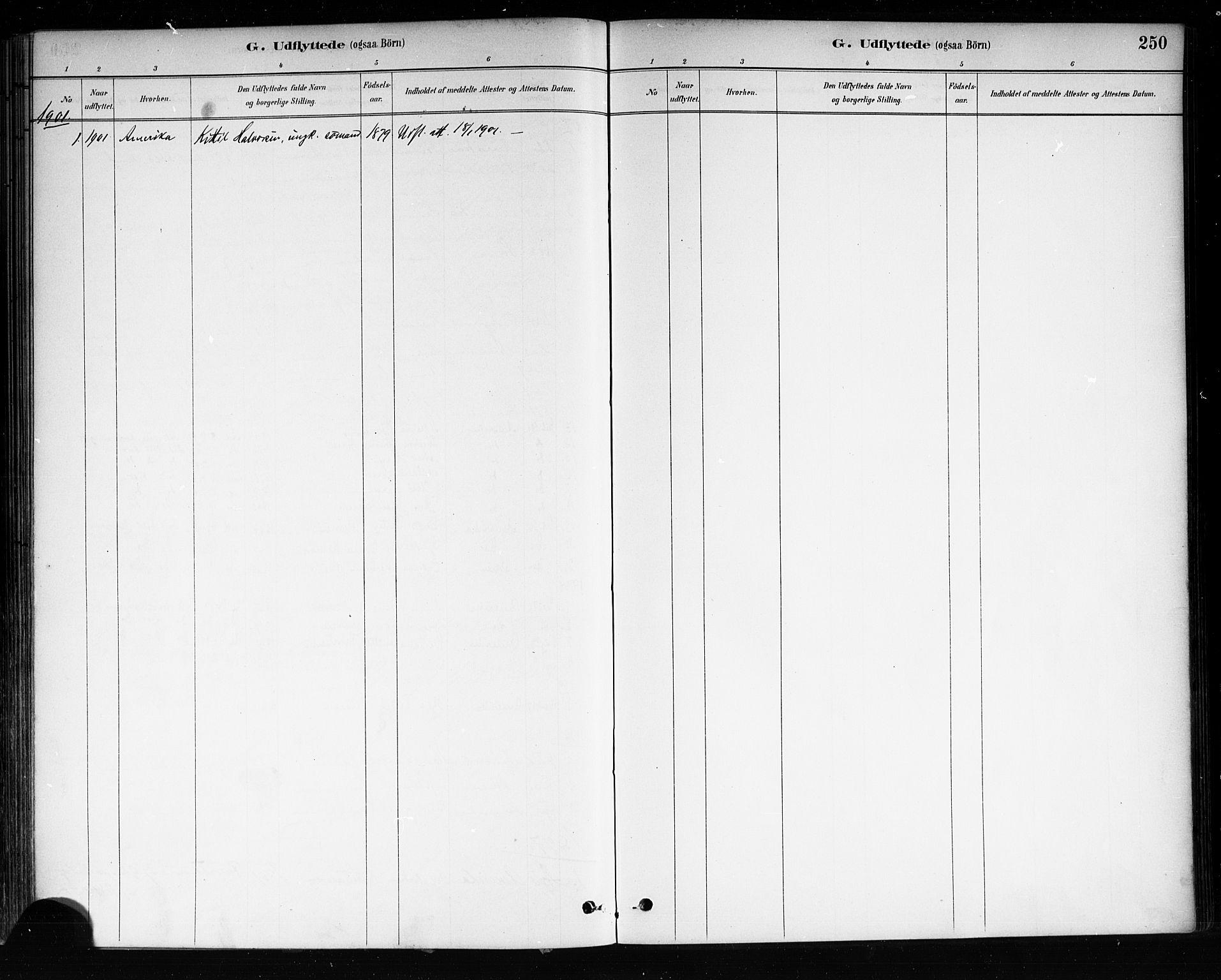 SAKO, Brevik kirkebøker, F/Fa/L0007: Ministerialbok nr. 7, 1882-1900, s. 250