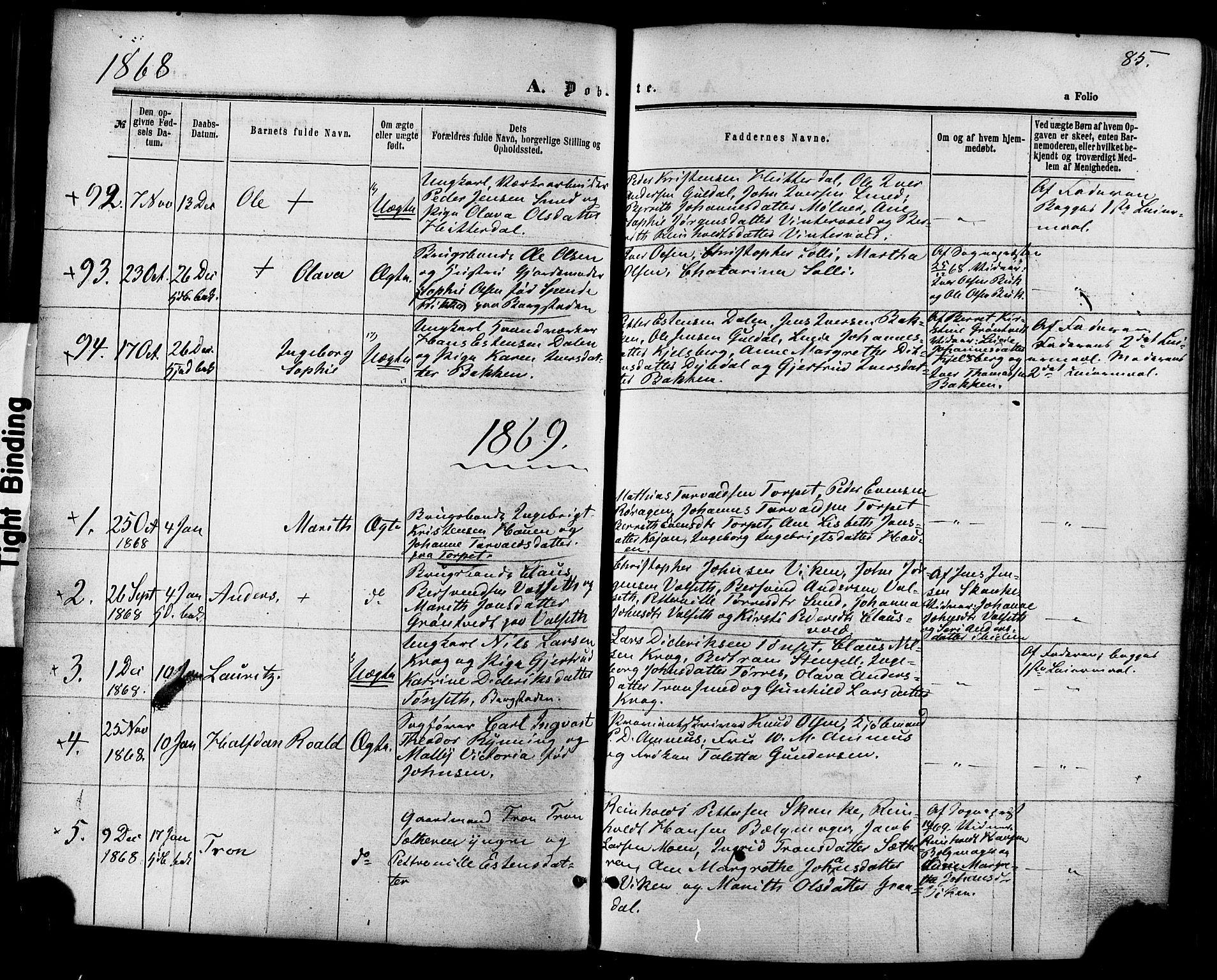 SAT, Ministerialprotokoller, klokkerbøker og fødselsregistre - Sør-Trøndelag, 681/L0932: Ministerialbok nr. 681A10, 1860-1878, s. 85