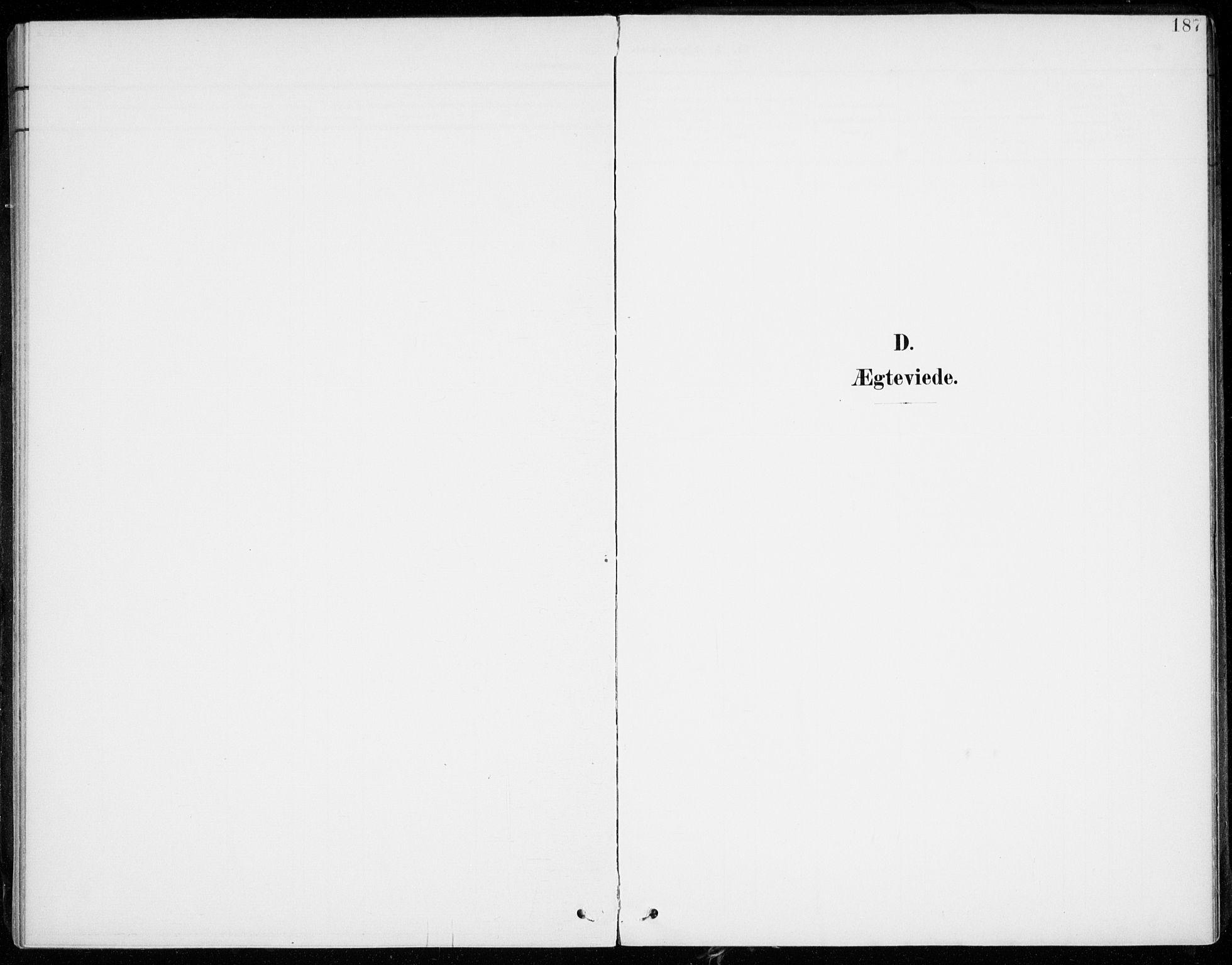 SATØ, Lenvik sokneprestembete, H/Ha: Ministerialbok nr. 14, 1899-1909, s. 187