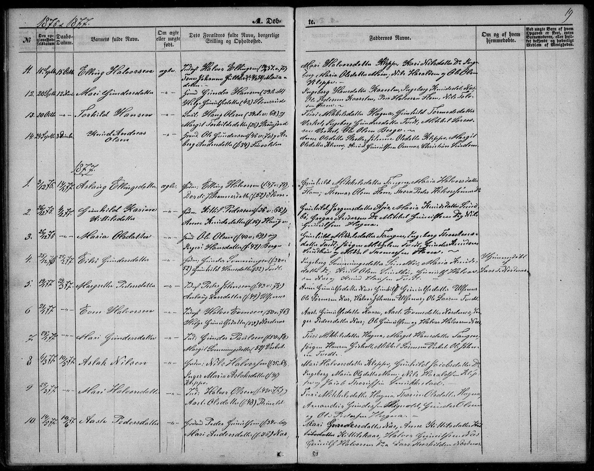 SAKO, Lunde kirkebøker, F/Fb/L0002: Ministerialbok nr. II 2, 1861-1881, s. 19