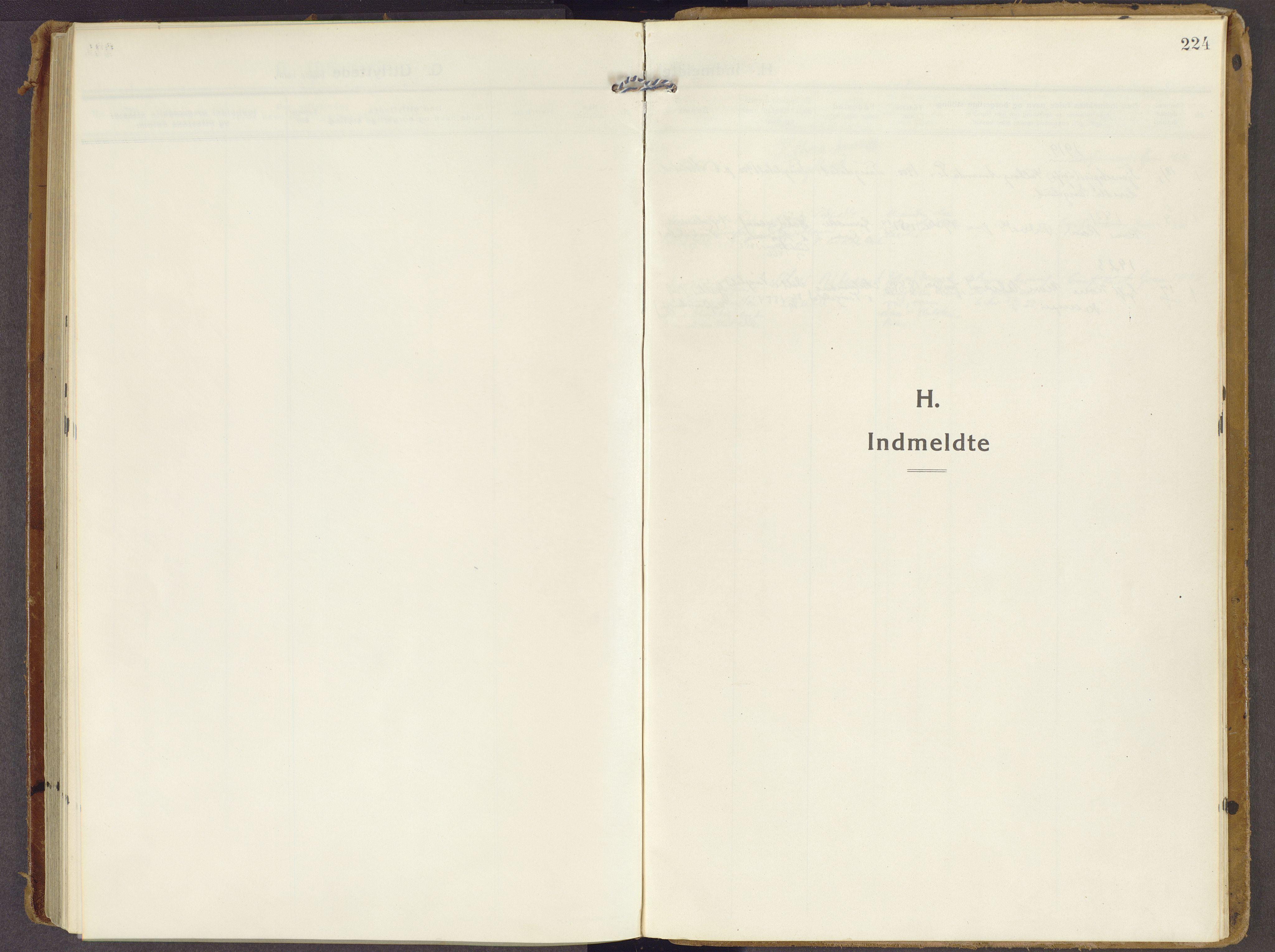 SAH, Brandbu prestekontor, Ministerialbok nr. 3, 1914-1928, s. 224