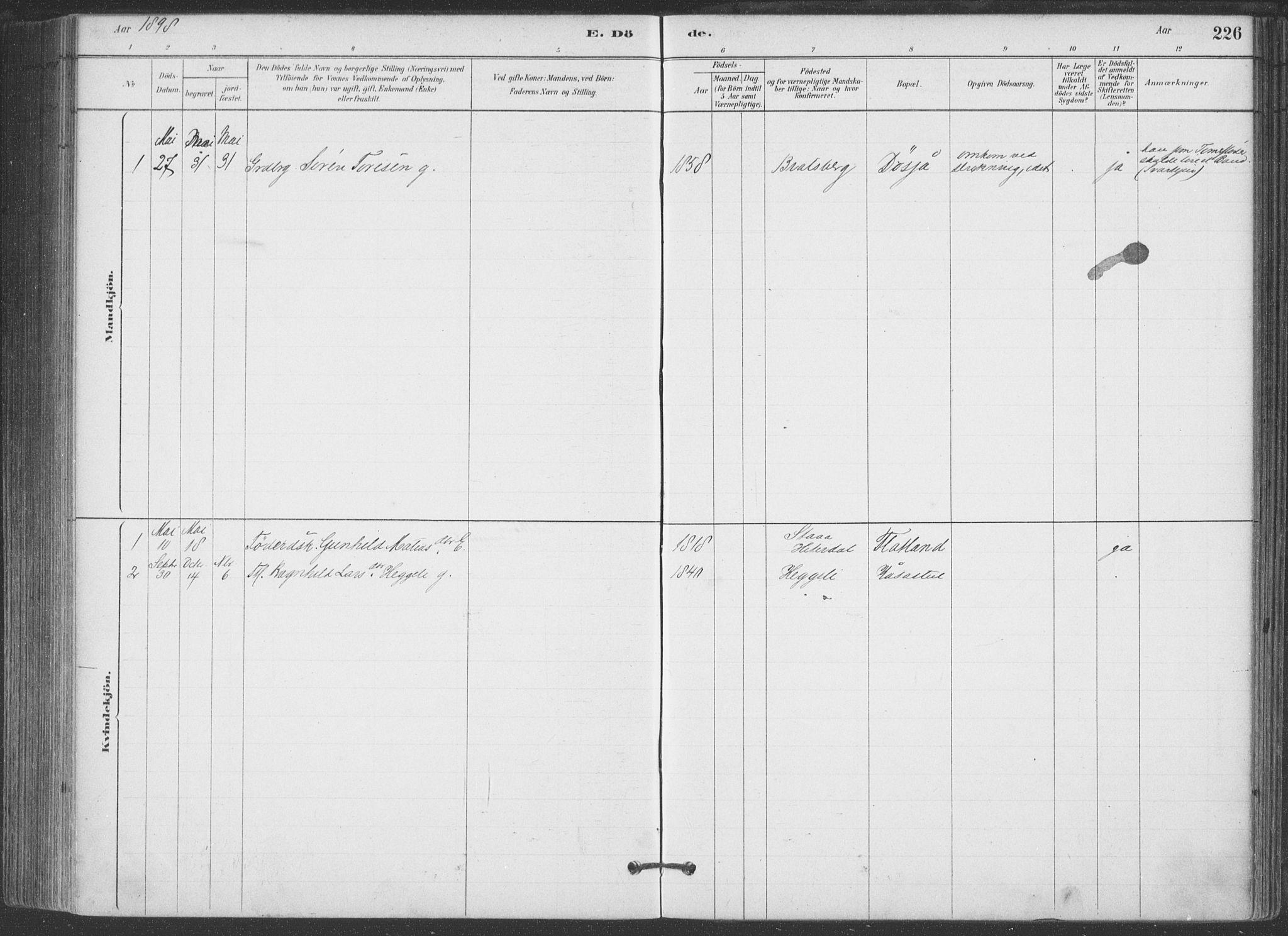 SAKO, Hjartdal kirkebøker, F/Fa/L0010: Ministerialbok nr. I 10, 1880-1929, s. 226