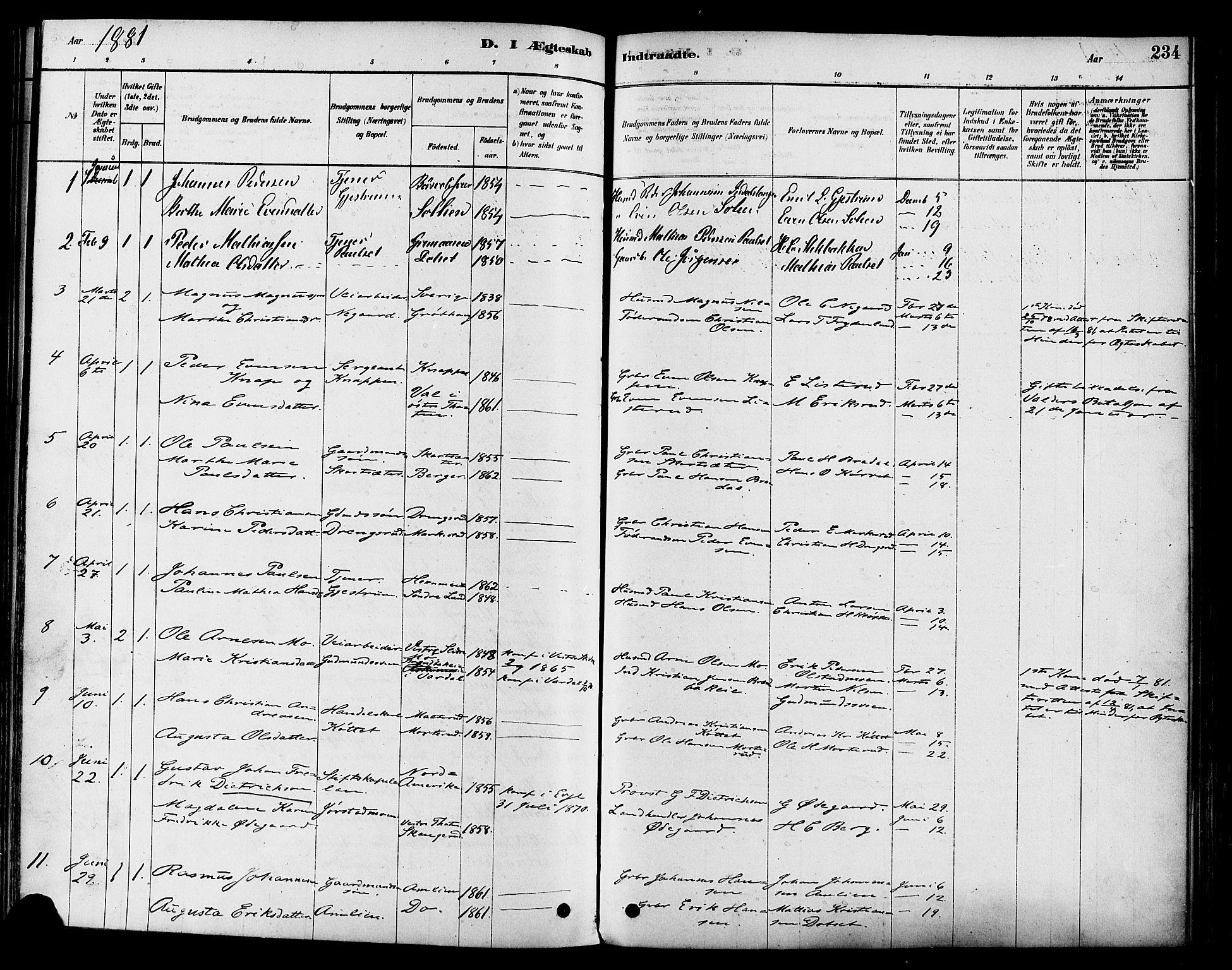 SAH, Vestre Toten prestekontor, H/Ha/Haa/L0009: Ministerialbok nr. 9, 1878-1894, s. 234
