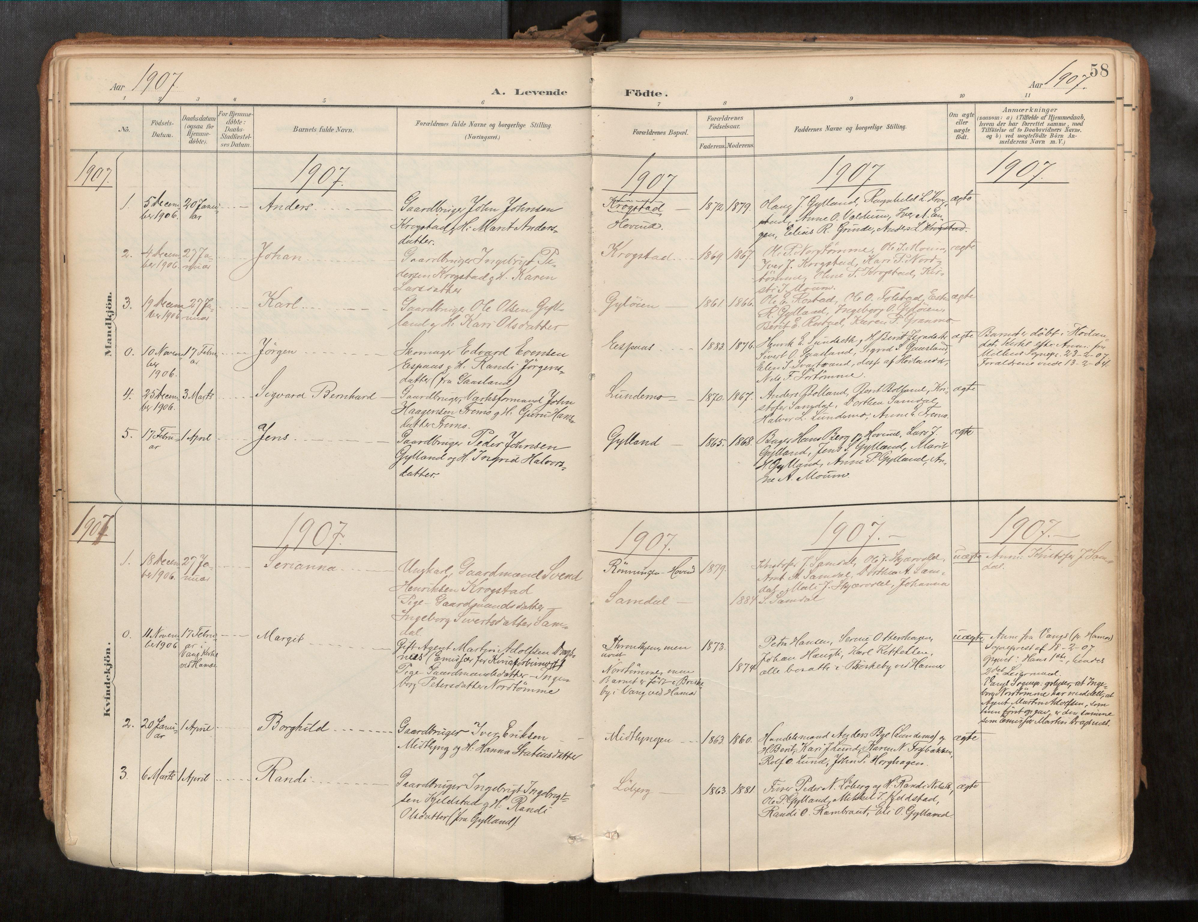 SAT, Ministerialprotokoller, klokkerbøker og fødselsregistre - Sør-Trøndelag, 692/L1105b: Ministerialbok nr. 692A06, 1891-1934, s. 58