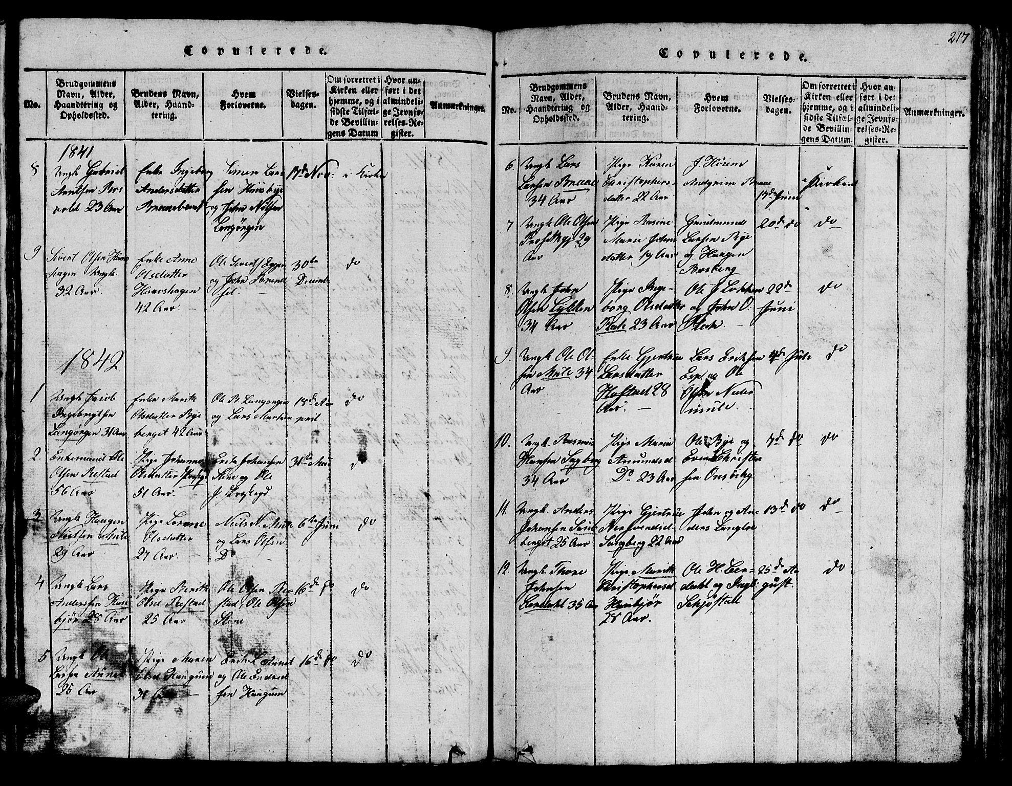 SAT, Ministerialprotokoller, klokkerbøker og fødselsregistre - Sør-Trøndelag, 612/L0385: Klokkerbok nr. 612C01, 1816-1845, s. 217