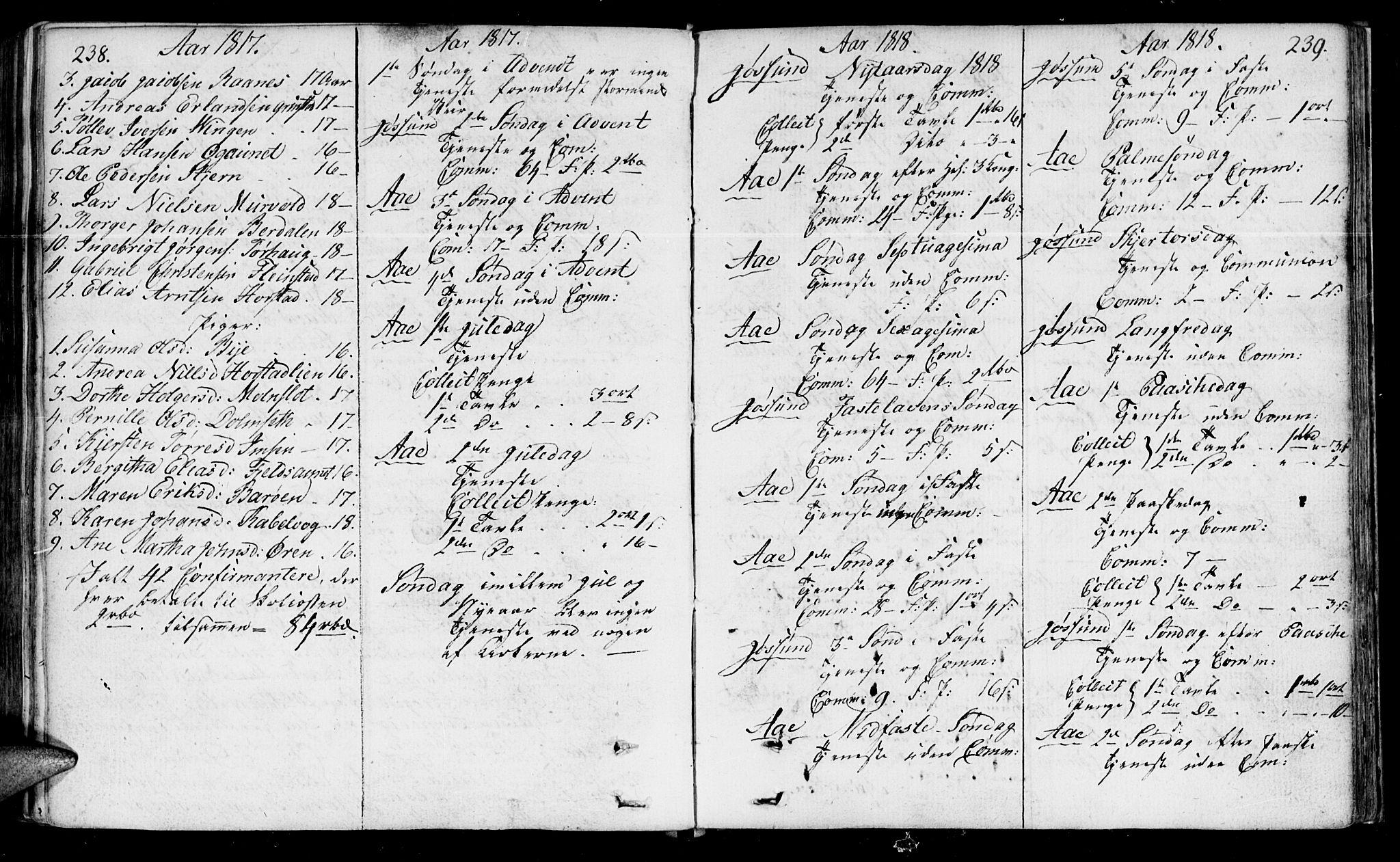 SAT, Ministerialprotokoller, klokkerbøker og fødselsregistre - Sør-Trøndelag, 655/L0674: Ministerialbok nr. 655A03, 1802-1826, s. 238-239