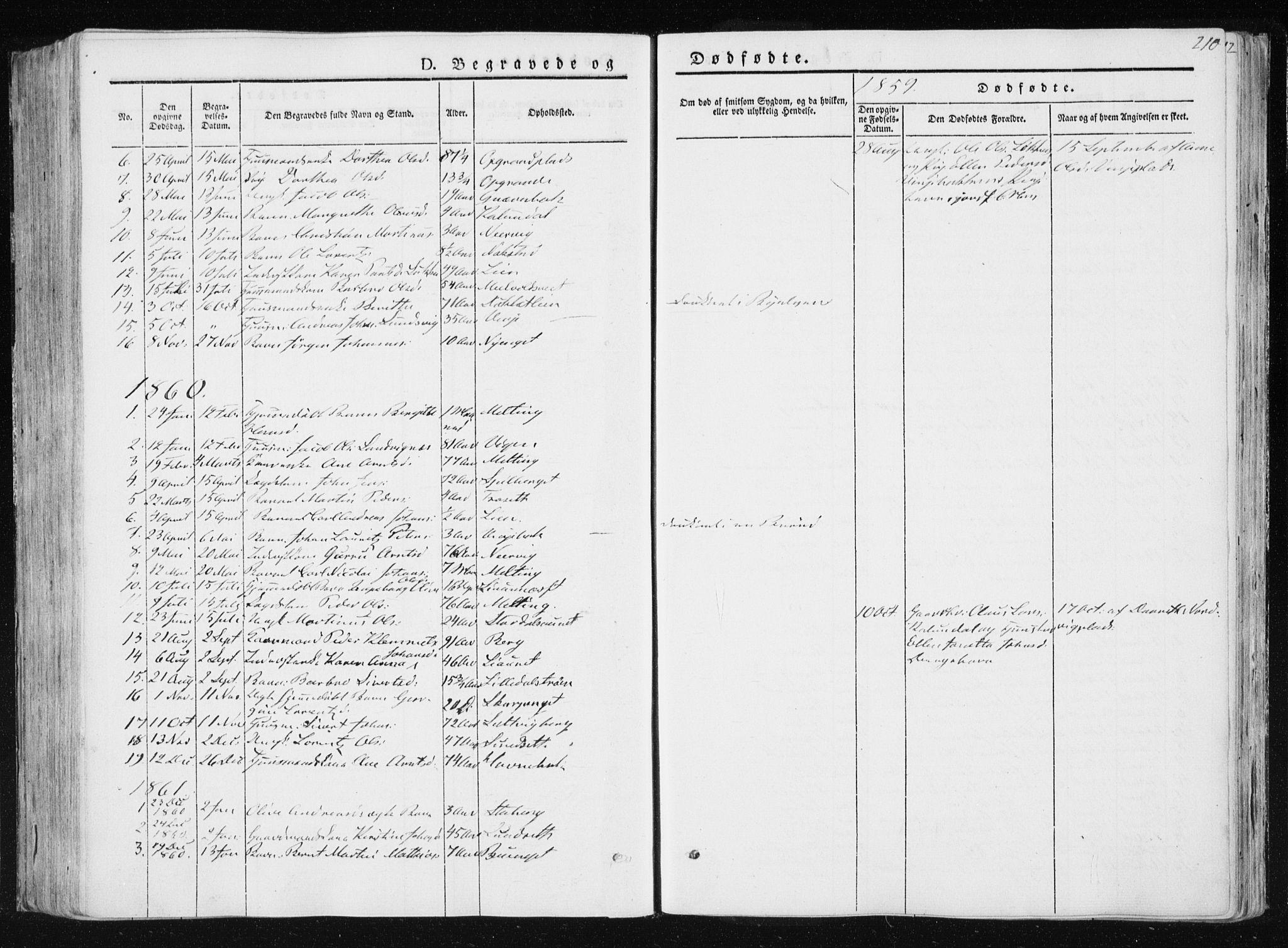 SAT, Ministerialprotokoller, klokkerbøker og fødselsregistre - Nord-Trøndelag, 733/L0323: Ministerialbok nr. 733A02, 1843-1870, s. 210
