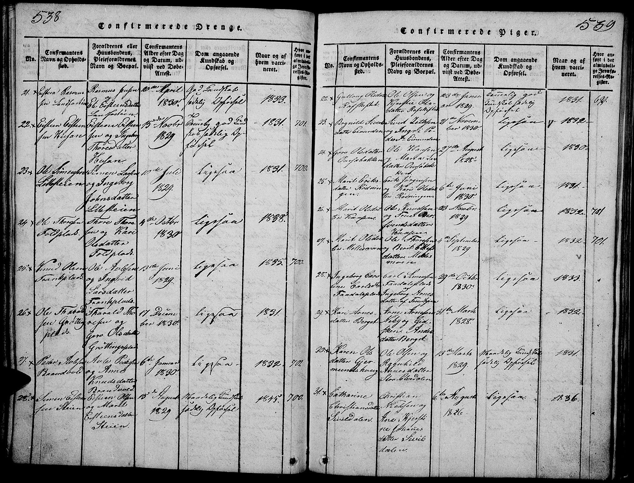 SAH, Tynset prestekontor, Klokkerbok nr. 2, 1814-1862, s. 538-539