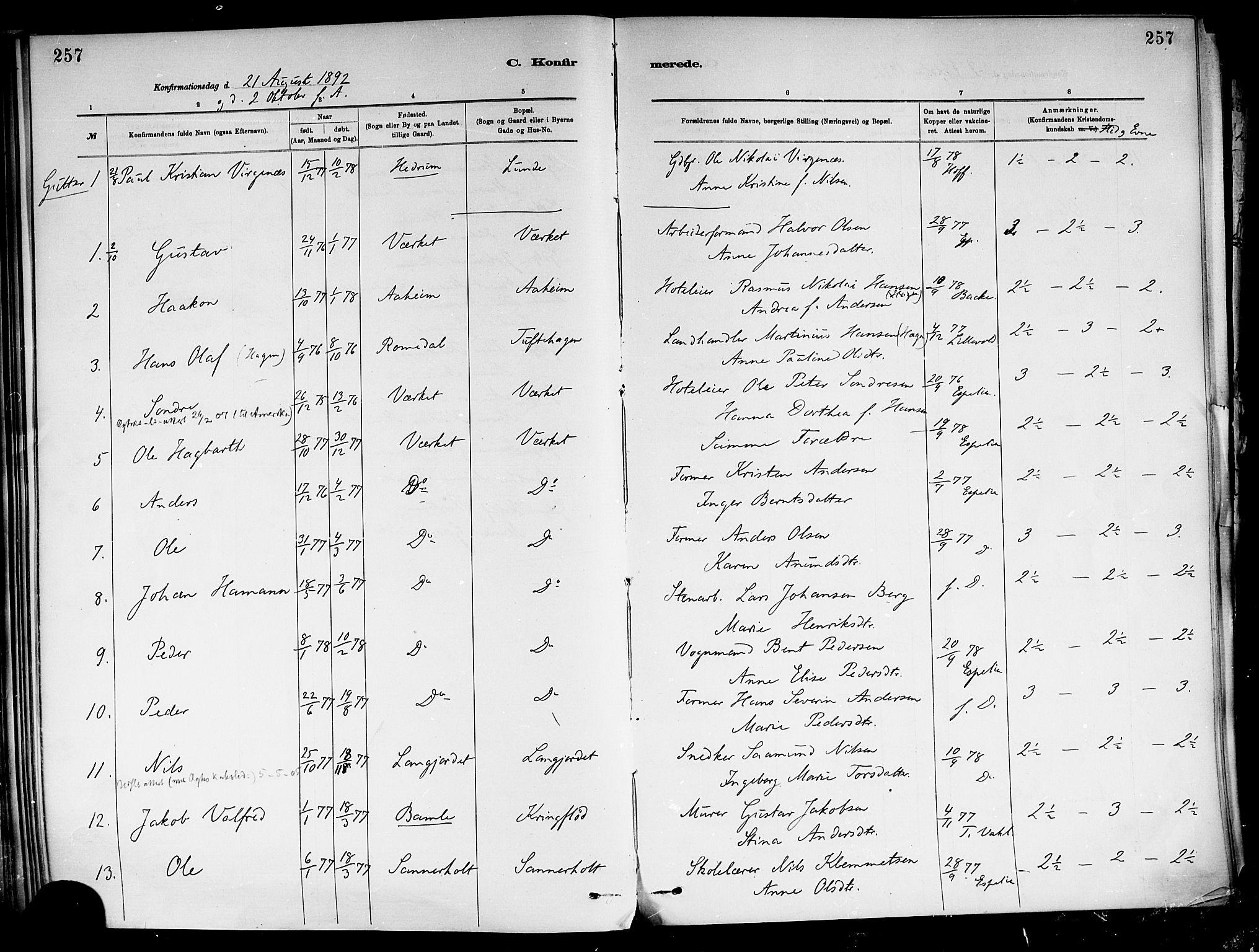 SAKO, Holla kirkebøker, F/Fa/L0008: Ministerialbok nr. 8, 1882-1897, s. 257