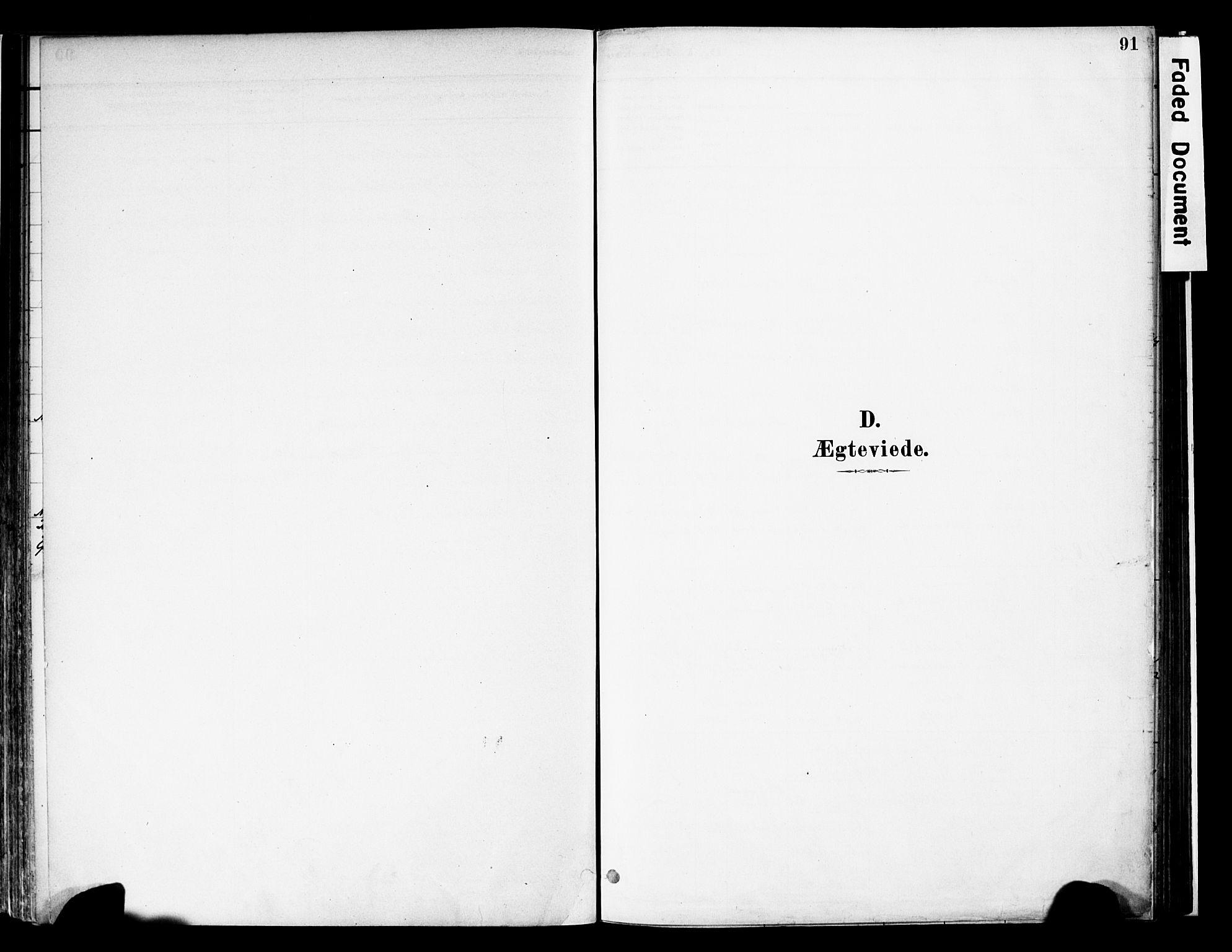 SAH, Vestre Slidre prestekontor, Ministerialbok nr. 6, 1881-1912, s. 91