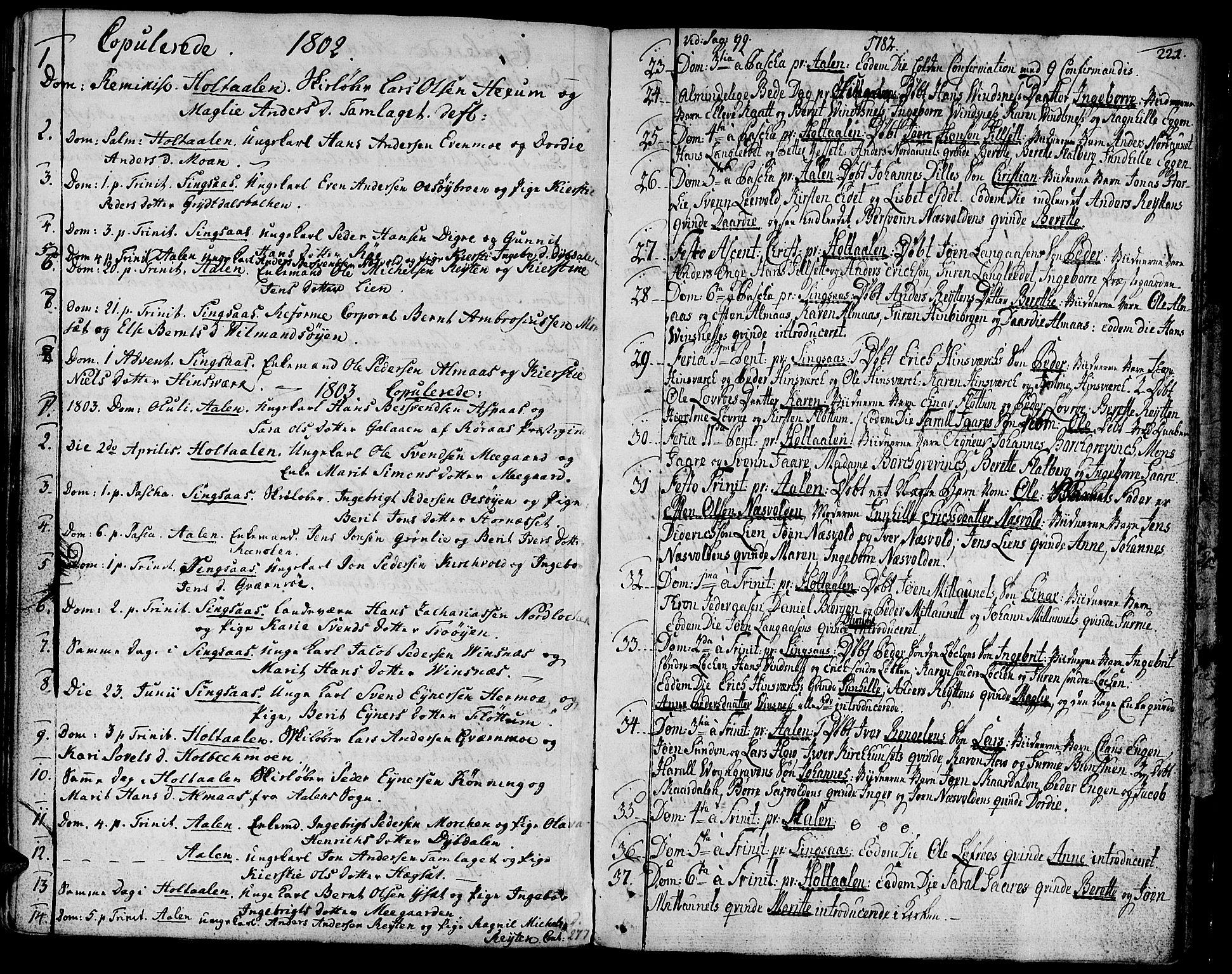 SAT, Ministerialprotokoller, klokkerbøker og fødselsregistre - Sør-Trøndelag, 685/L0952: Ministerialbok nr. 685A01, 1745-1804, s. 221