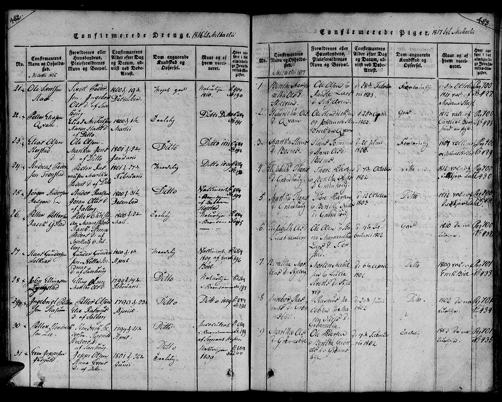 SAT, Ministerialprotokoller, klokkerbøker og fødselsregistre - Nord-Trøndelag, 730/L0275: Ministerialbok nr. 730A04, 1816-1822, s. 482-483