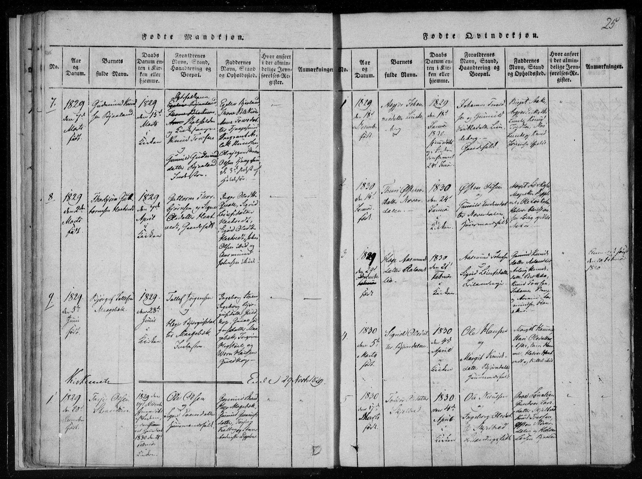 SAKO, Lårdal kirkebøker, F/Fa/L0005: Ministerialbok nr. I 5, 1815-1860, s. 25