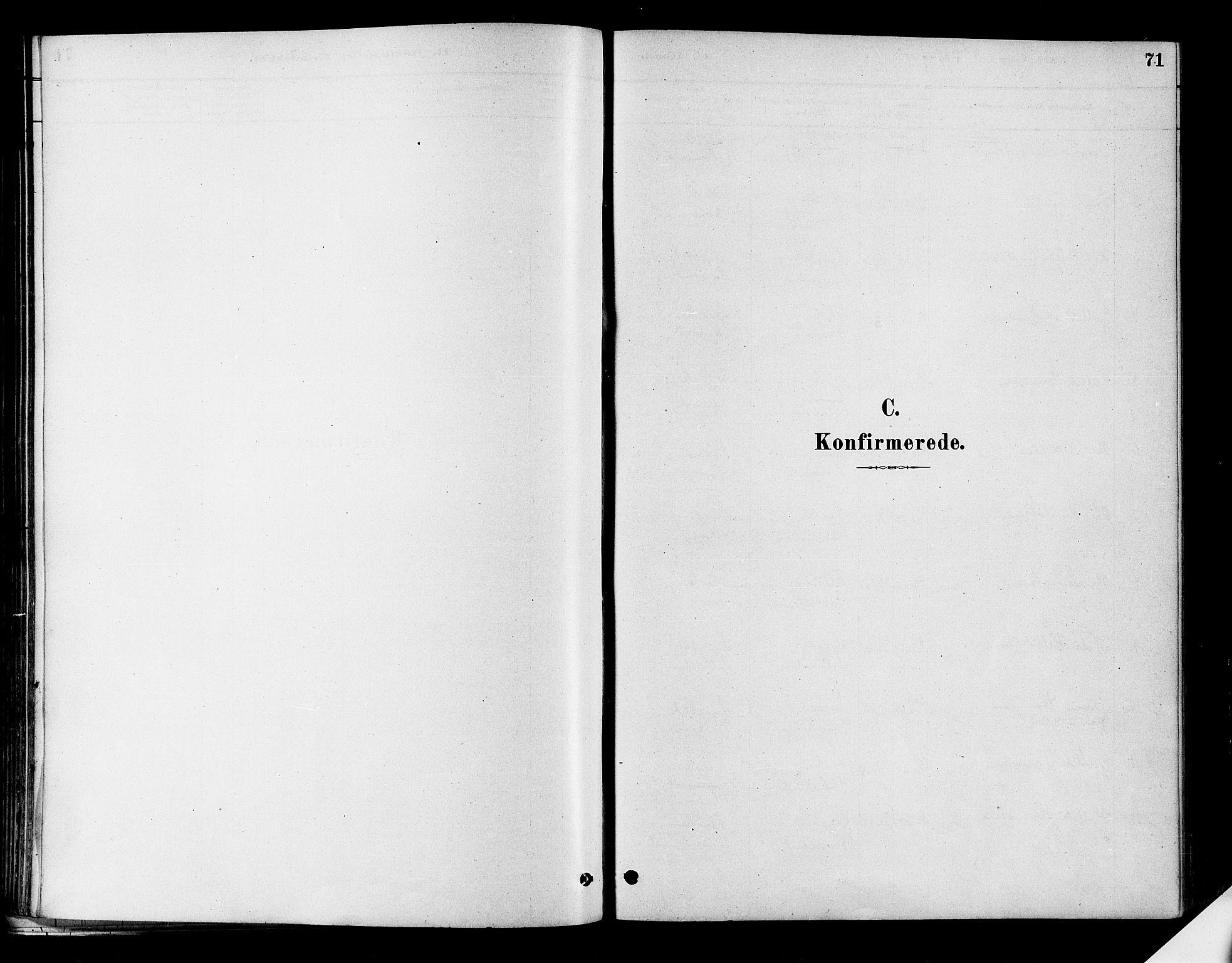 SAKO, Flesberg kirkebøker, F/Fa/L0008: Ministerialbok nr. I 8, 1879-1899, s. 71