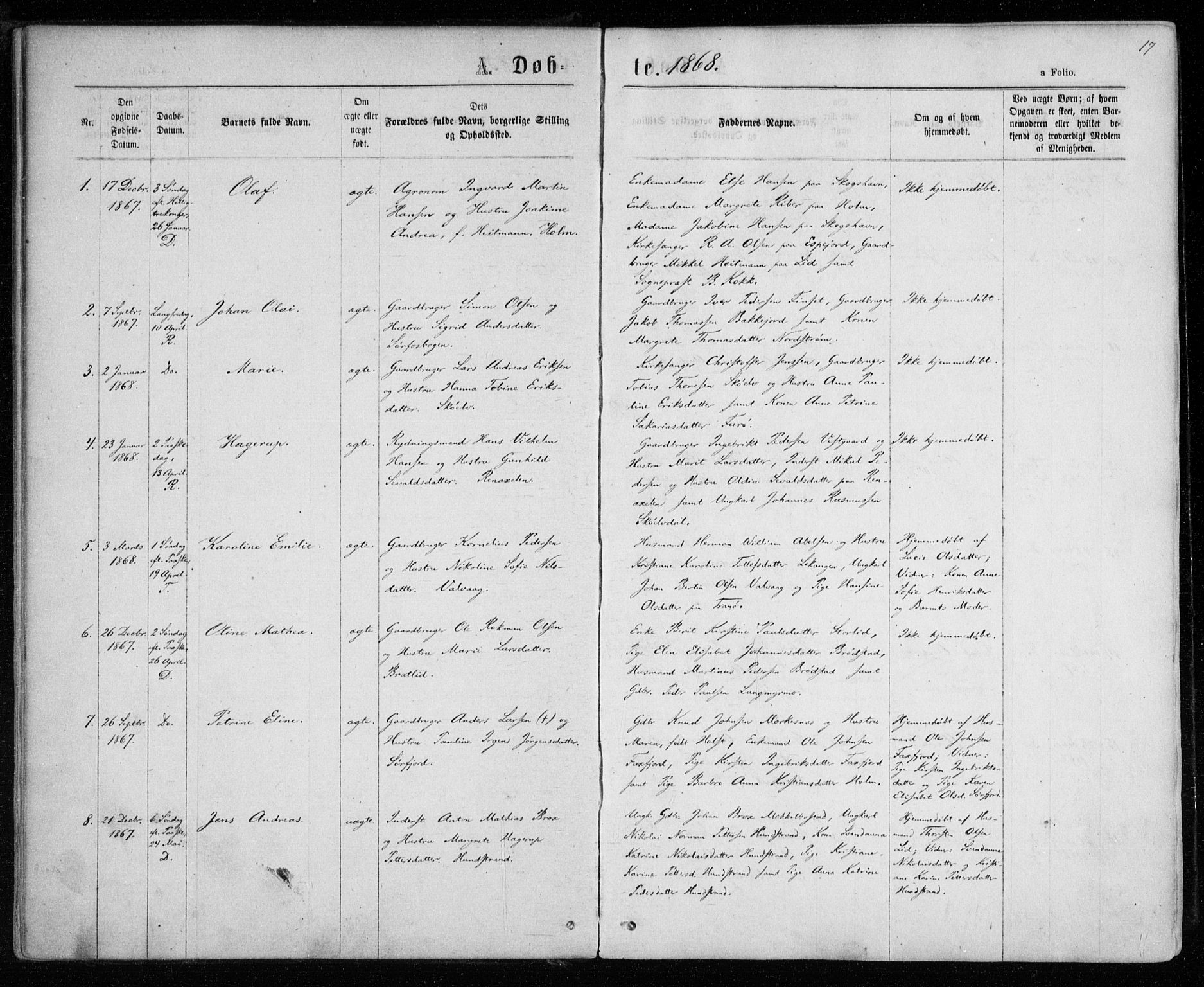 SATØ, Tranøy sokneprestkontor, I/Ia/Iaa/L0008kirke: Ministerialbok nr. 8, 1867-1877, s. 17