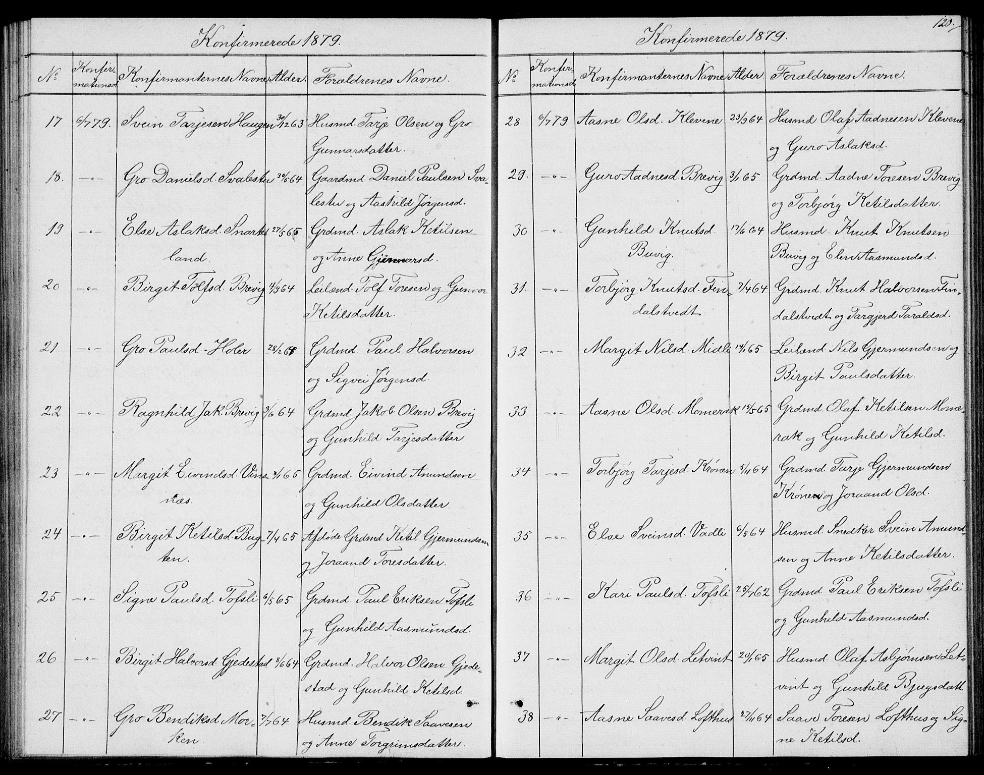 SAKO, Fyresdal kirkebøker, G/Ga/L0004: Klokkerbok nr. I 4, 1864-1892, s. 120