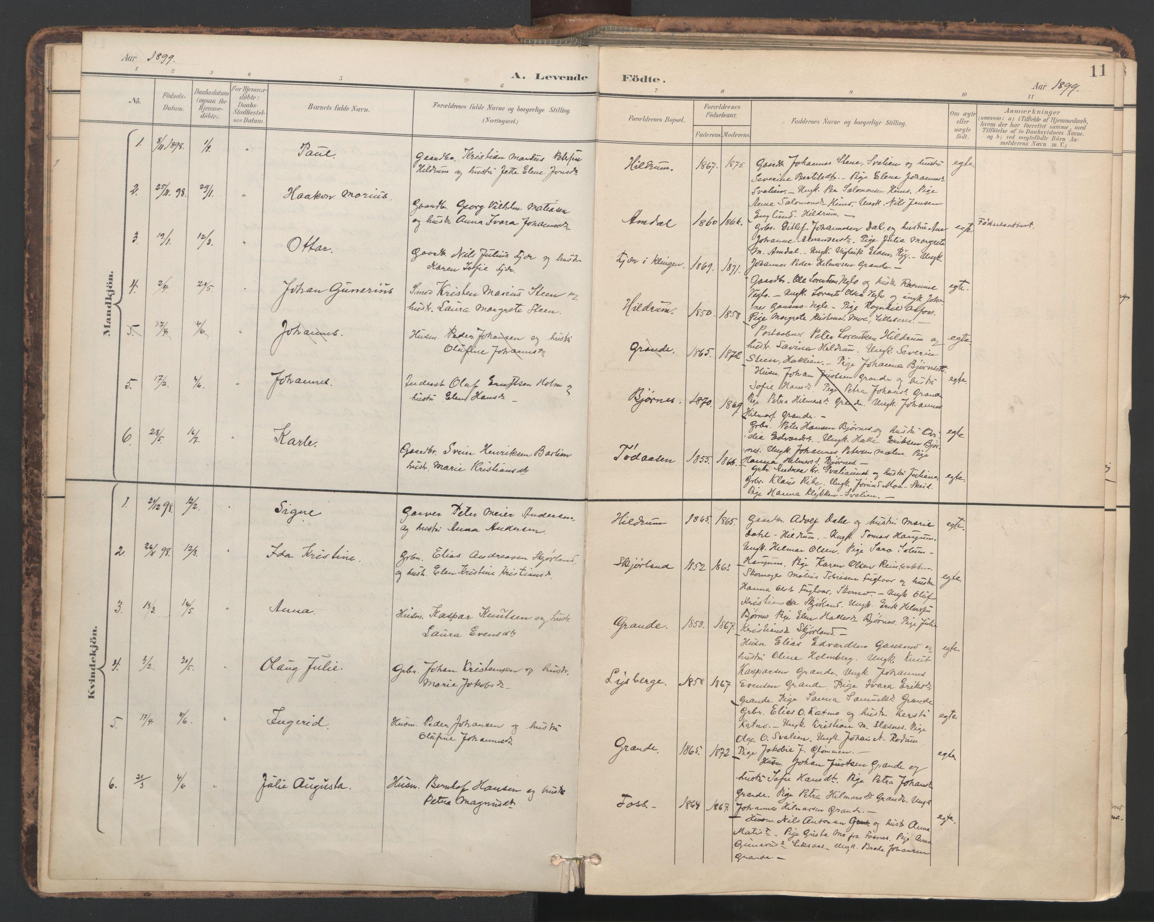 SAT, Ministerialprotokoller, klokkerbøker og fødselsregistre - Nord-Trøndelag, 764/L0556: Ministerialbok nr. 764A11, 1897-1924, s. 11