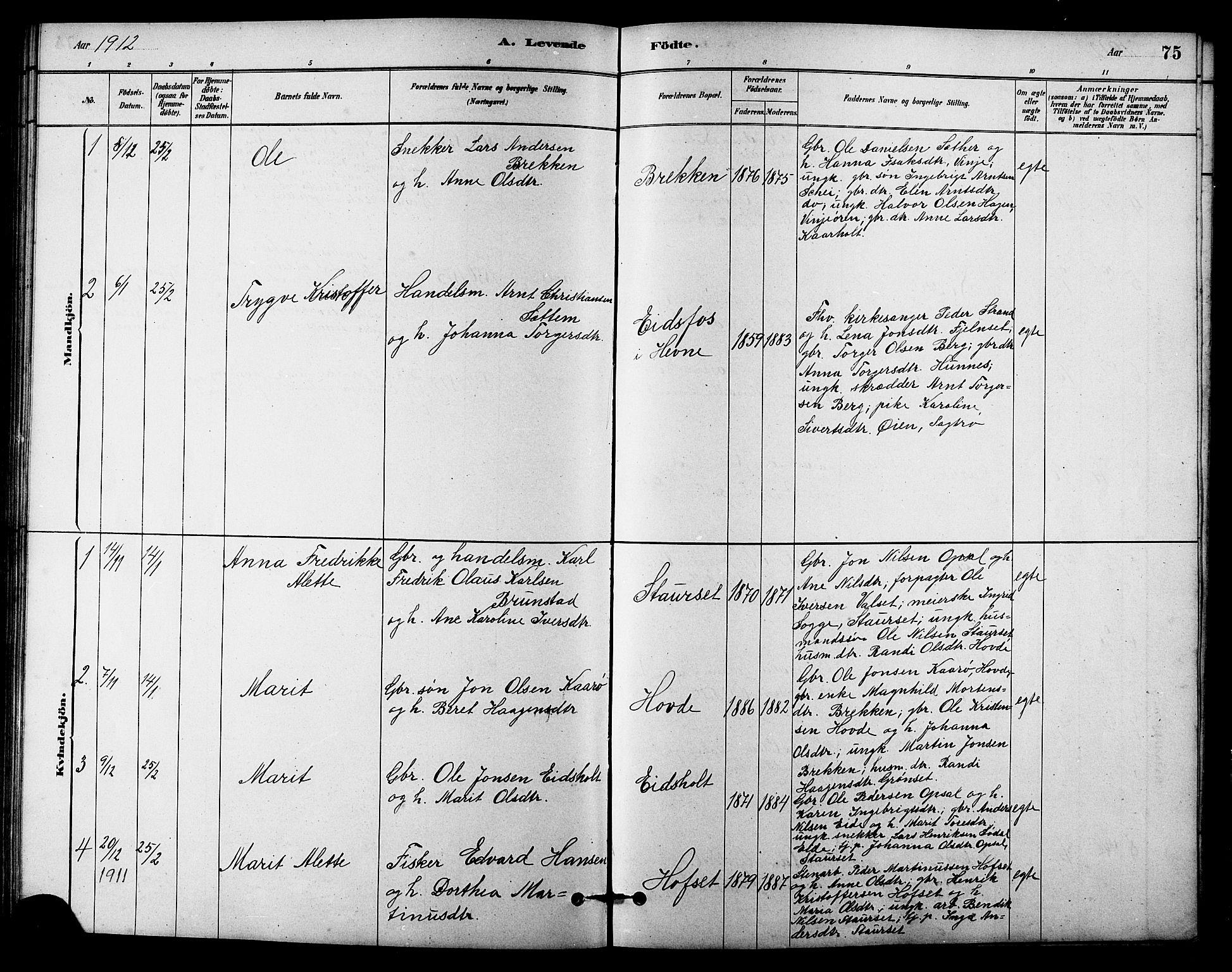 SAT, Ministerialprotokoller, klokkerbøker og fødselsregistre - Sør-Trøndelag, 631/L0514: Klokkerbok nr. 631C02, 1879-1912, s. 75