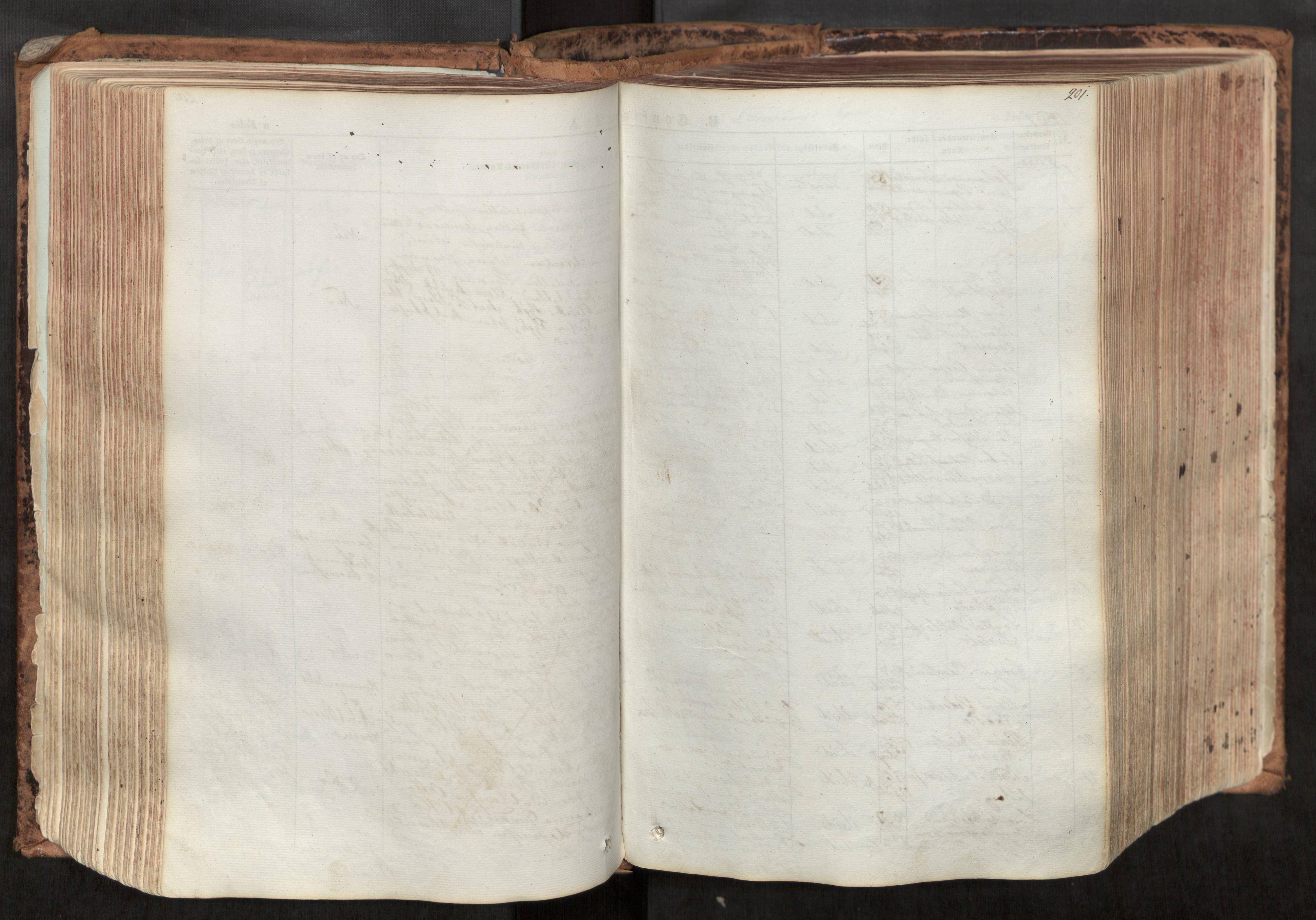 SAT, Ministerialprotokoller, klokkerbøker og fødselsregistre - Nord-Trøndelag, 713/L0116: Ministerialbok nr. 713A07, 1850-1877, s. 201