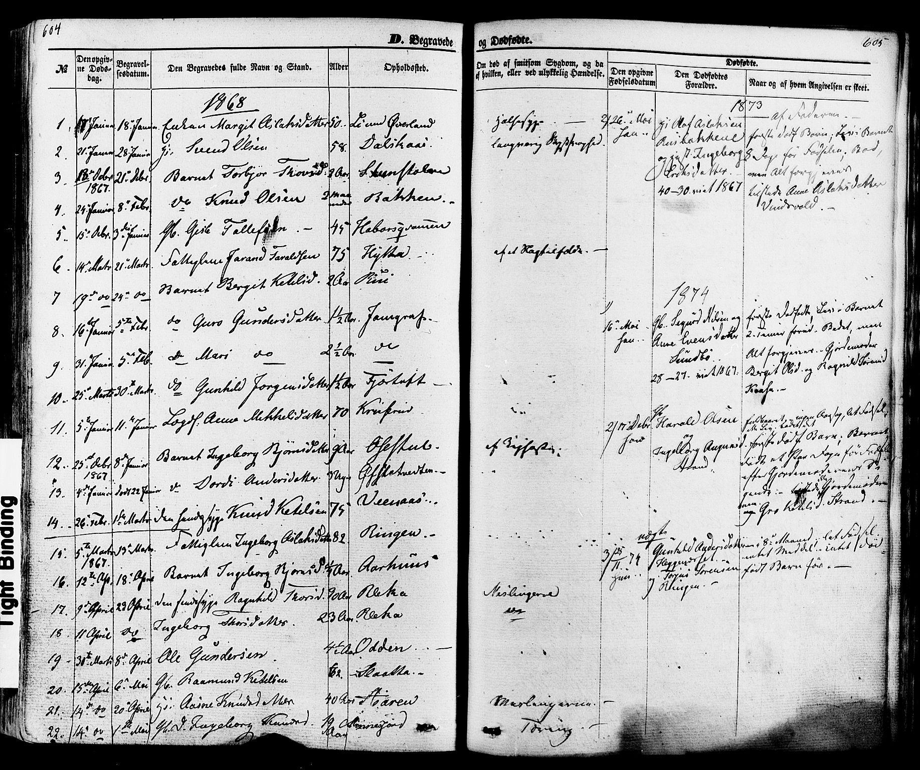 SAKO, Seljord kirkebøker, F/Fa/L0013: Ministerialbok nr. I 13, 1866-1876, s. 604-605