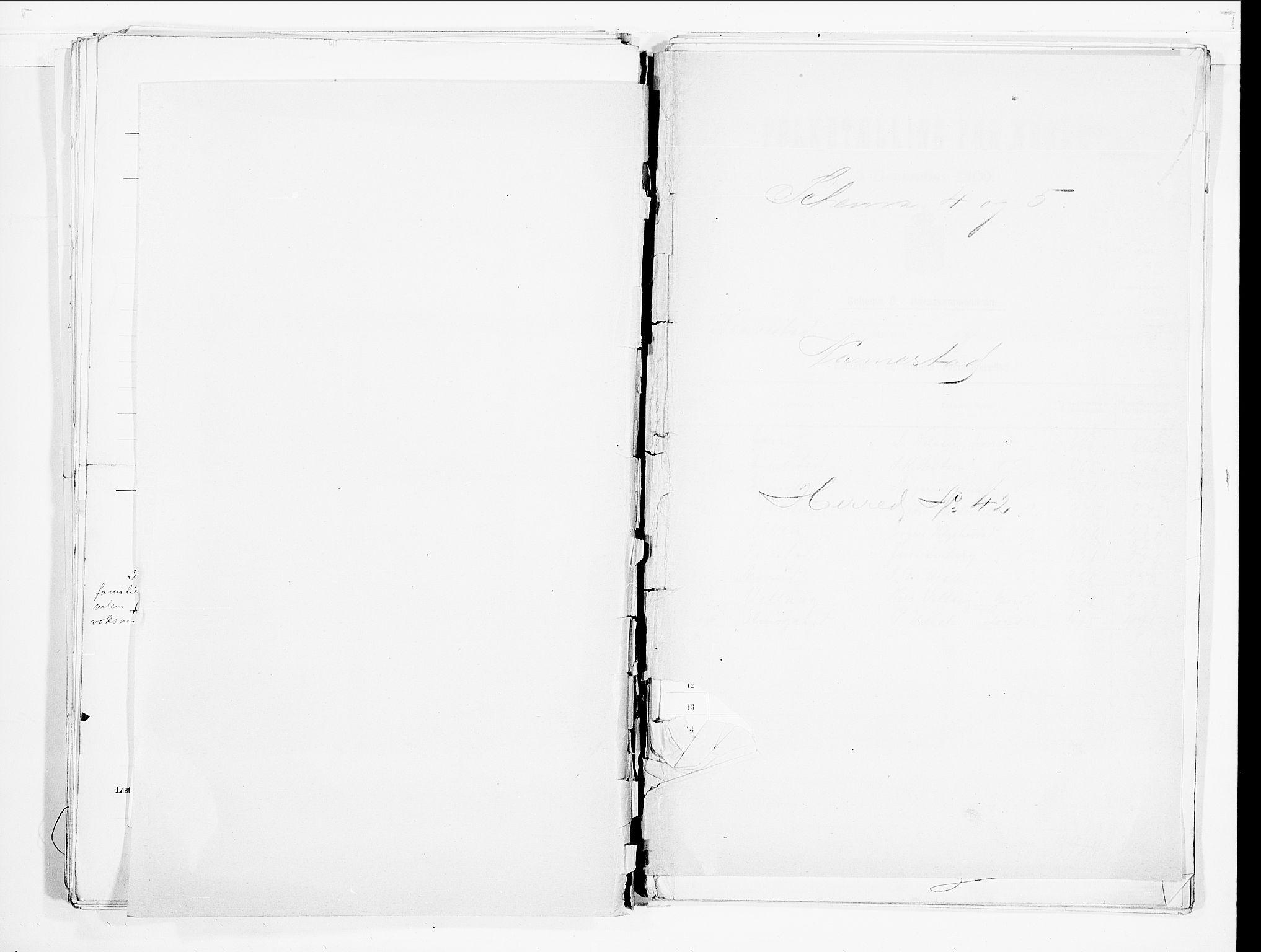 SAO, Folketelling 1900 for 0238 Nannestad herred, 1900, s. 1