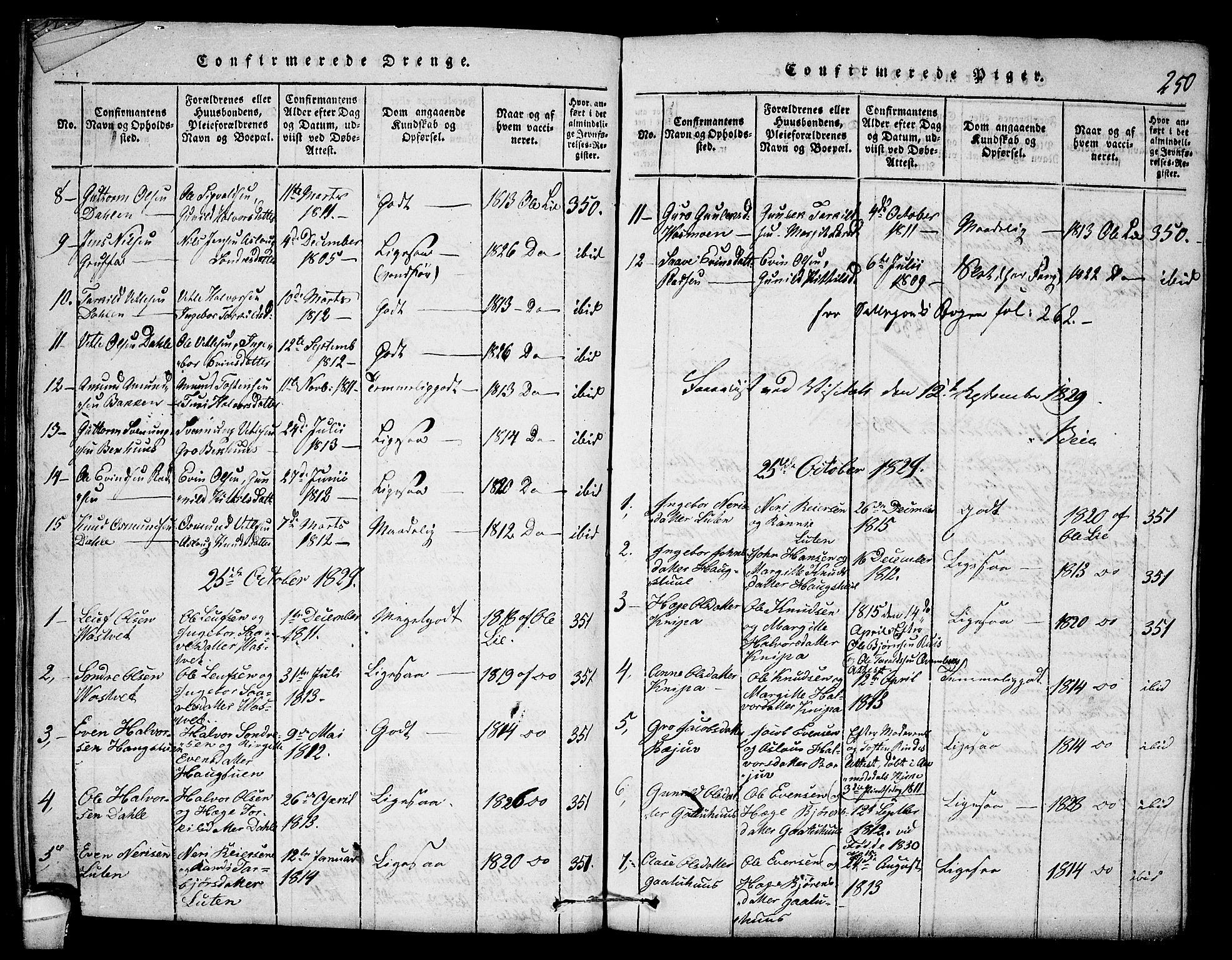 SAKO, Seljord kirkebøker, F/Fb/L0001: Ministerialbok nr. II 1, 1815-1831, s. 250
