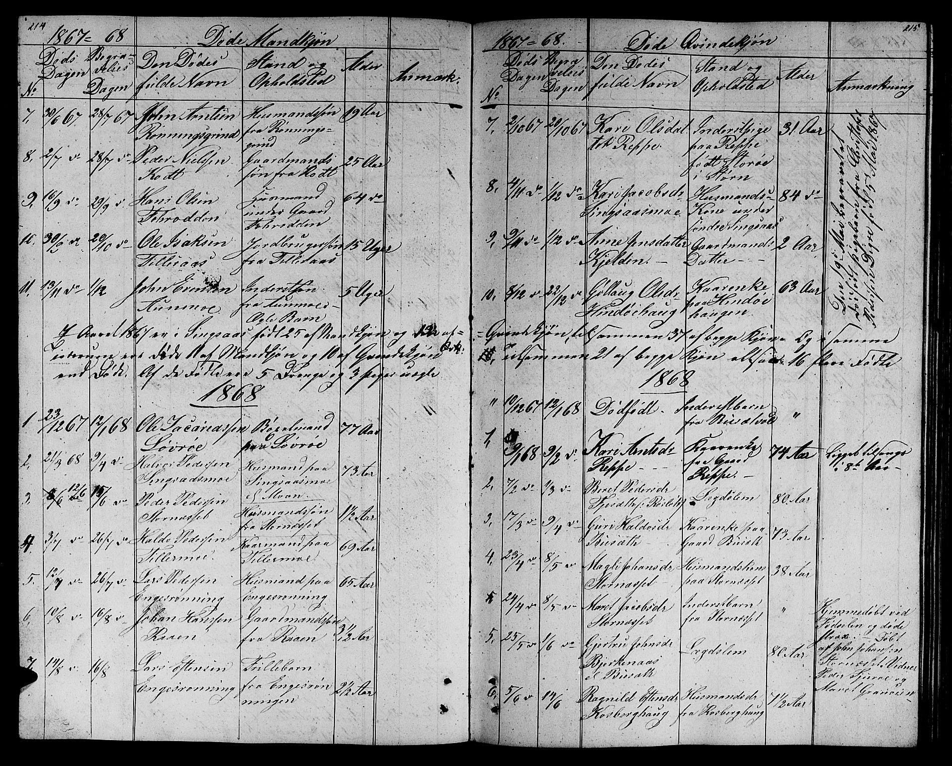 SAT, Ministerialprotokoller, klokkerbøker og fødselsregistre - Sør-Trøndelag, 688/L1027: Klokkerbok nr. 688C02, 1861-1889, s. 214-215