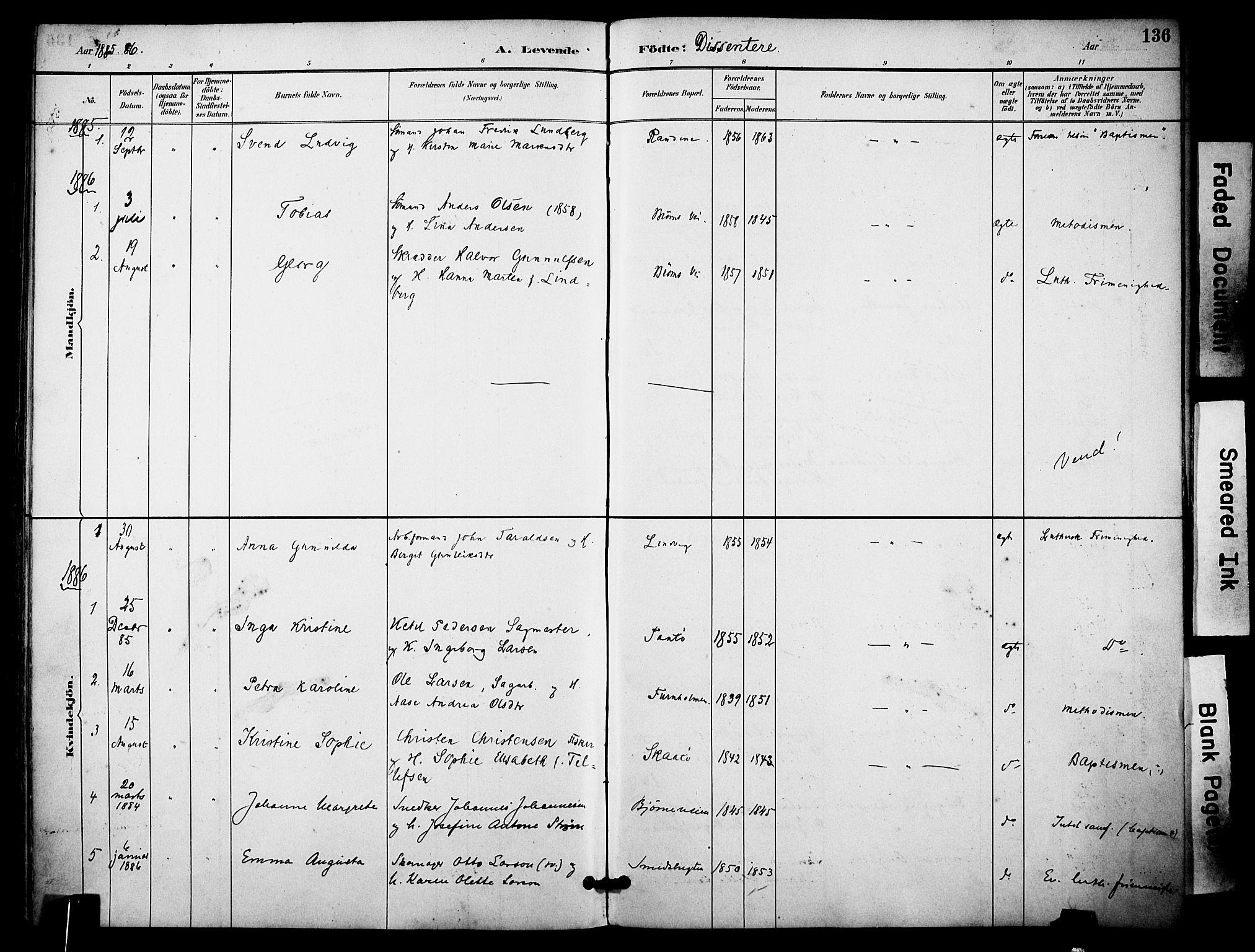 SAKO, Skåtøy kirkebøker, F/Fa/L0002: Ministerialbok nr. I 2, 1884-1899, s. 136
