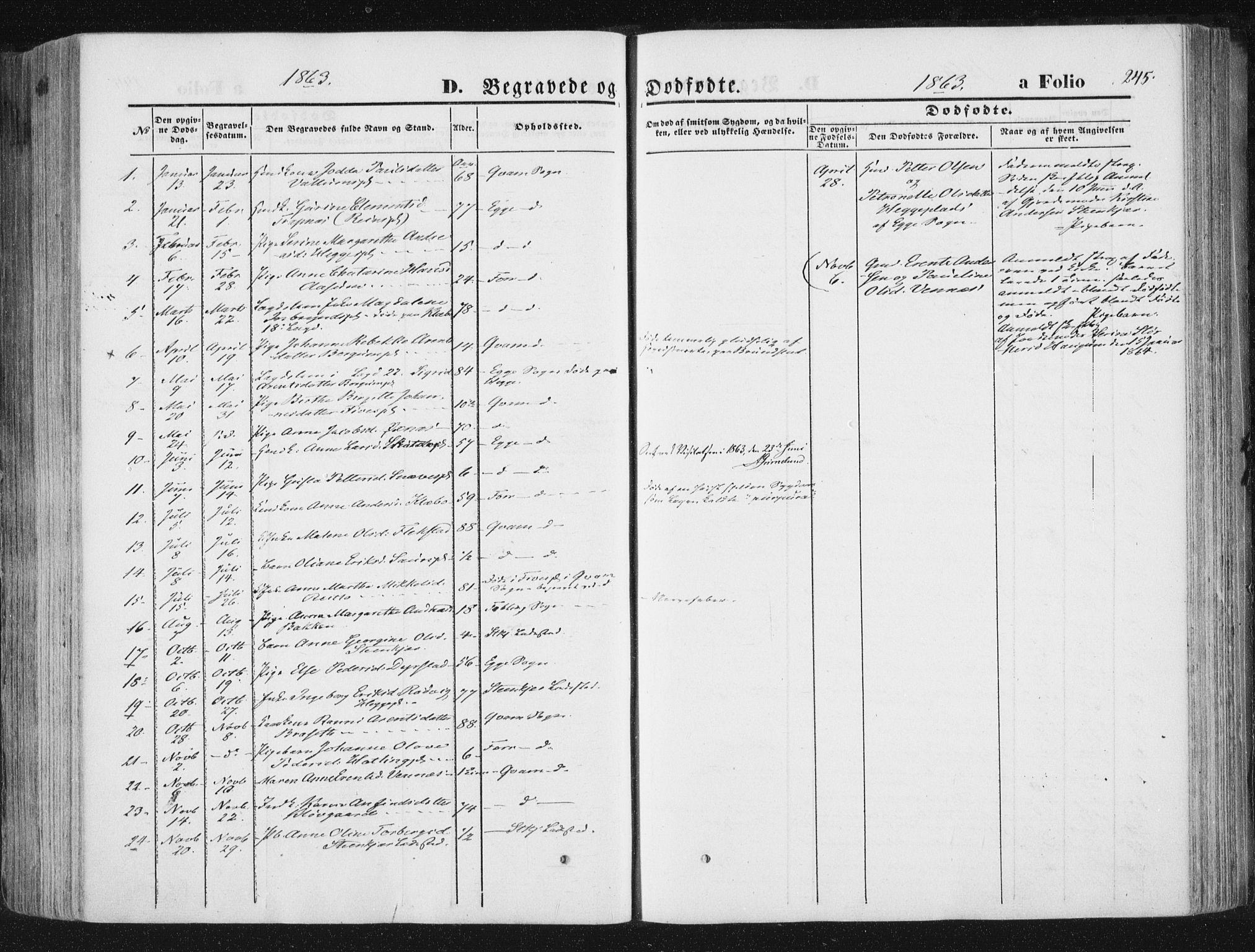 SAT, Ministerialprotokoller, klokkerbøker og fødselsregistre - Nord-Trøndelag, 746/L0447: Ministerialbok nr. 746A06, 1860-1877, s. 245