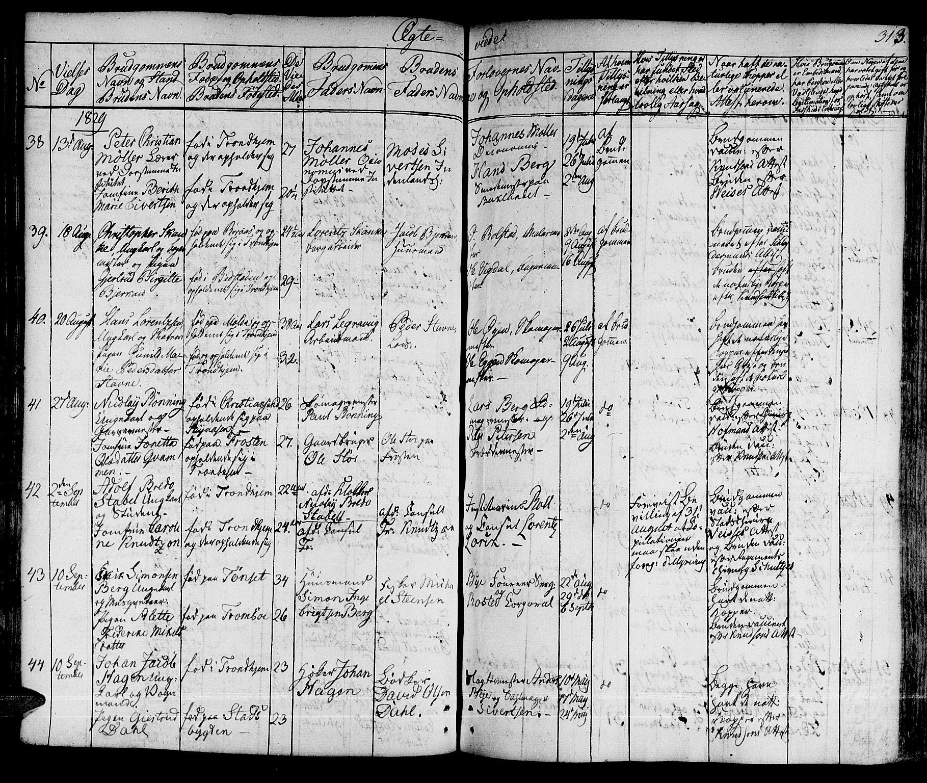 SAT, Ministerialprotokoller, klokkerbøker og fødselsregistre - Sør-Trøndelag, 601/L0045: Ministerialbok nr. 601A13, 1821-1831, s. 313