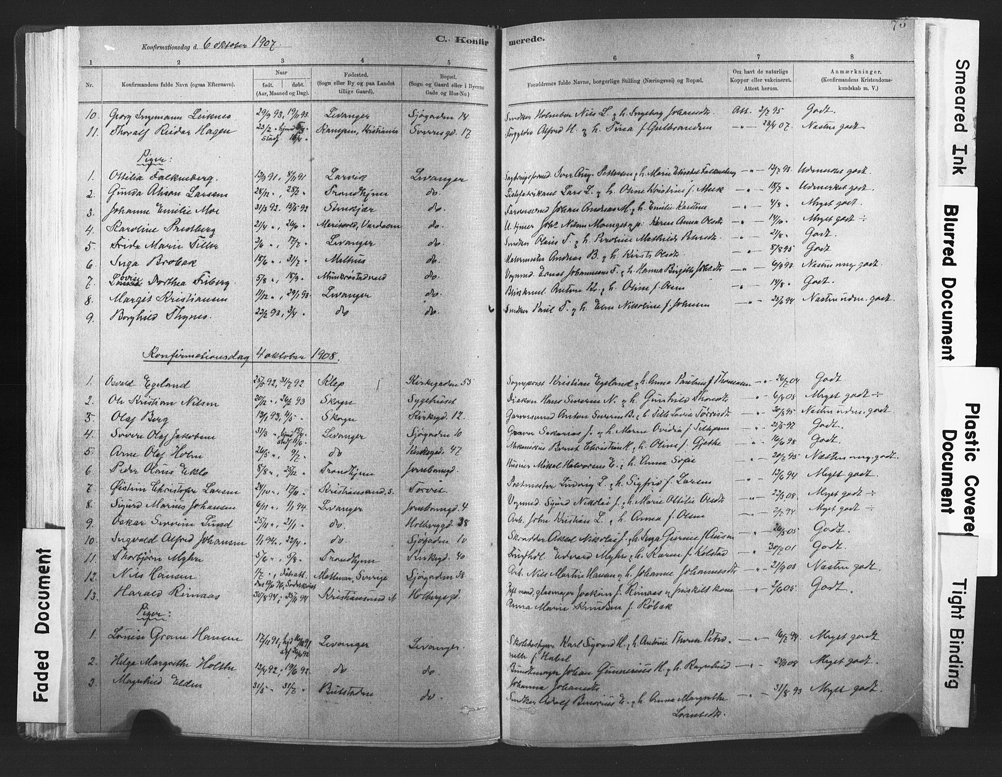SAT, Ministerialprotokoller, klokkerbøker og fødselsregistre - Nord-Trøndelag, 720/L0189: Ministerialbok nr. 720A05, 1880-1911, s. 73