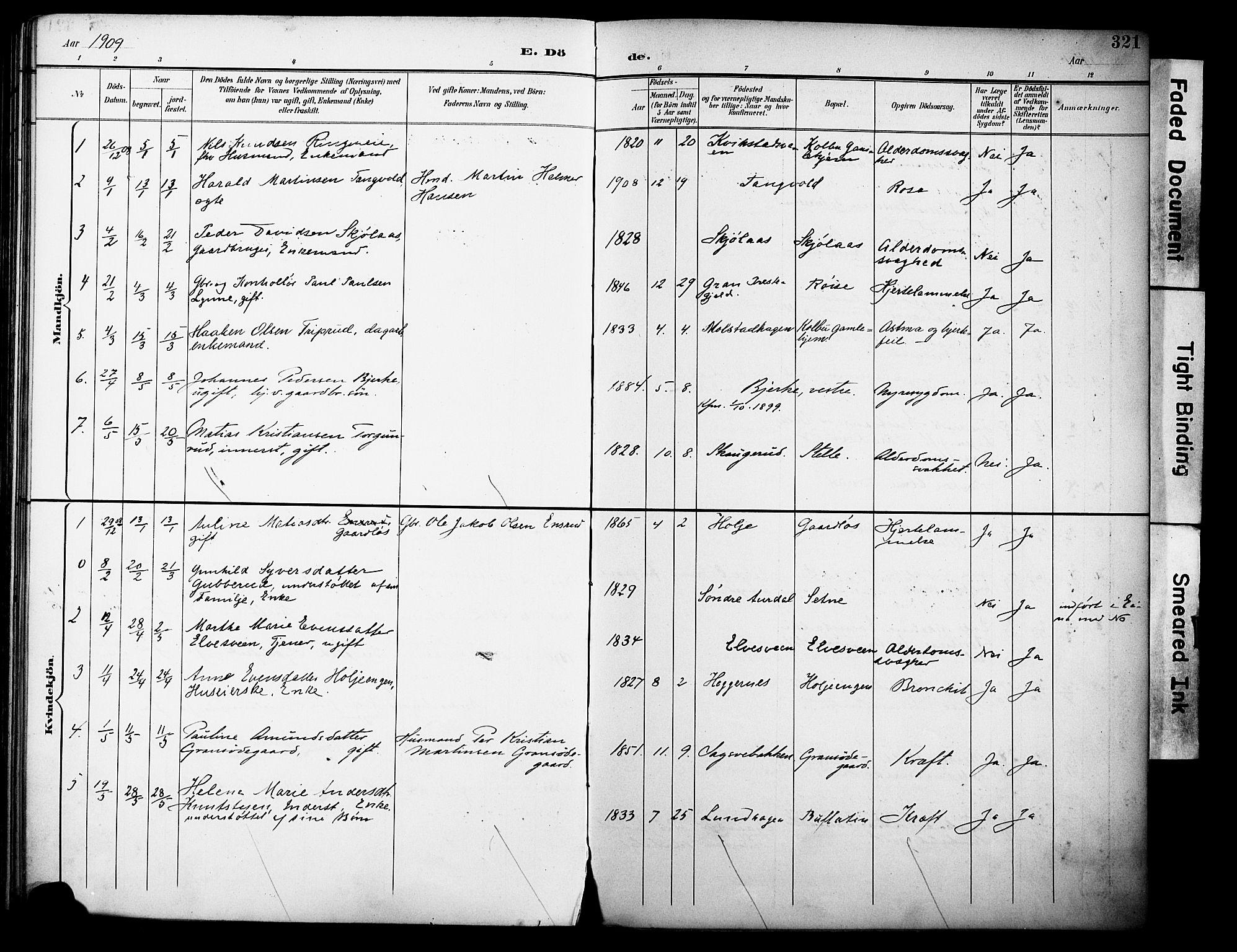 SAH, Vestre Toten prestekontor, H/Ha/Haa/L0013: Ministerialbok nr. 13, 1895-1911, s. 321