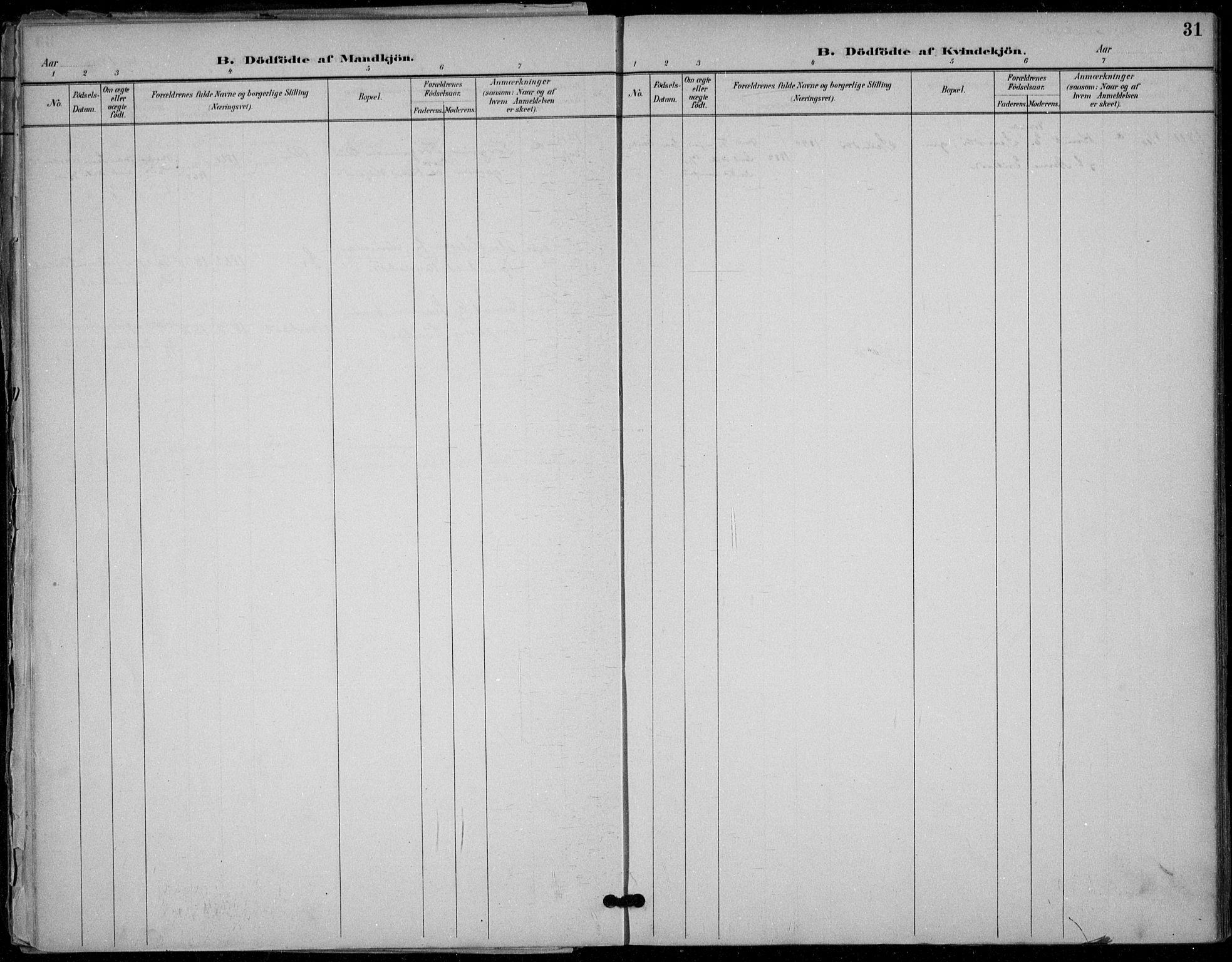 SAKO, Seljord kirkebøker, F/Fb/L0002: Ministerialbok nr. II 2, 1887-1917, s. 31