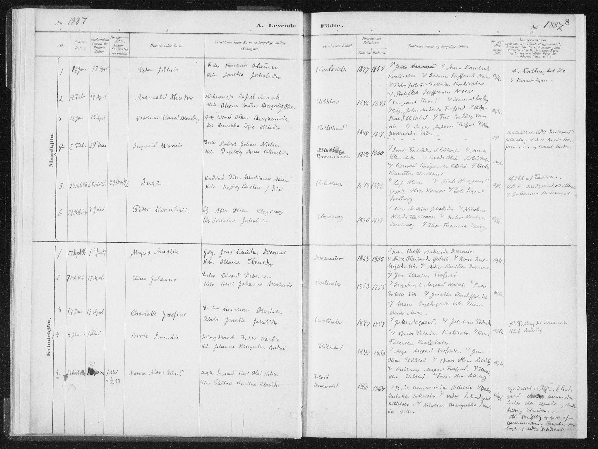 SAT, Ministerialprotokoller, klokkerbøker og fødselsregistre - Nord-Trøndelag, 771/L0597: Ministerialbok nr. 771A04, 1885-1910, s. 8