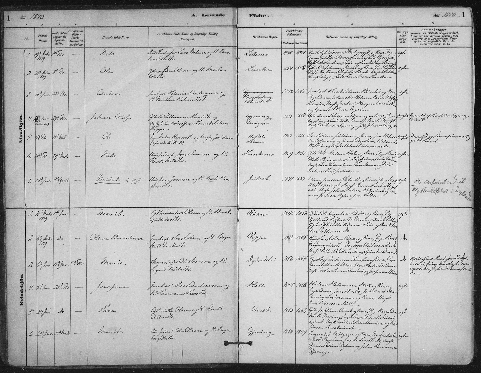 SAT, Ministerialprotokoller, klokkerbøker og fødselsregistre - Nord-Trøndelag, 710/L0095: Ministerialbok nr. 710A01, 1880-1914, s. 1